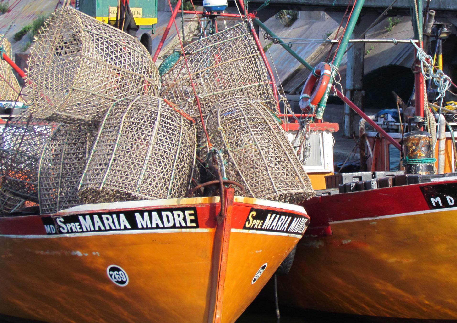 """Mar del Plata fue uno de los primeros destinos turísticos elegidos por los argentinos para veranear. Y ahora llega un nuevo proyecto para que """"La Feliz"""" sea un un punto de turismo los 12 meses del año. El puerto dejará de ser un paseo de enero y febrero para comer en sus restaurantes o ver lobos marinos. Eso quedará en el pasado para transformar el puerto en un lugar de interés tanto para turistas como para ciudadanos locales"""