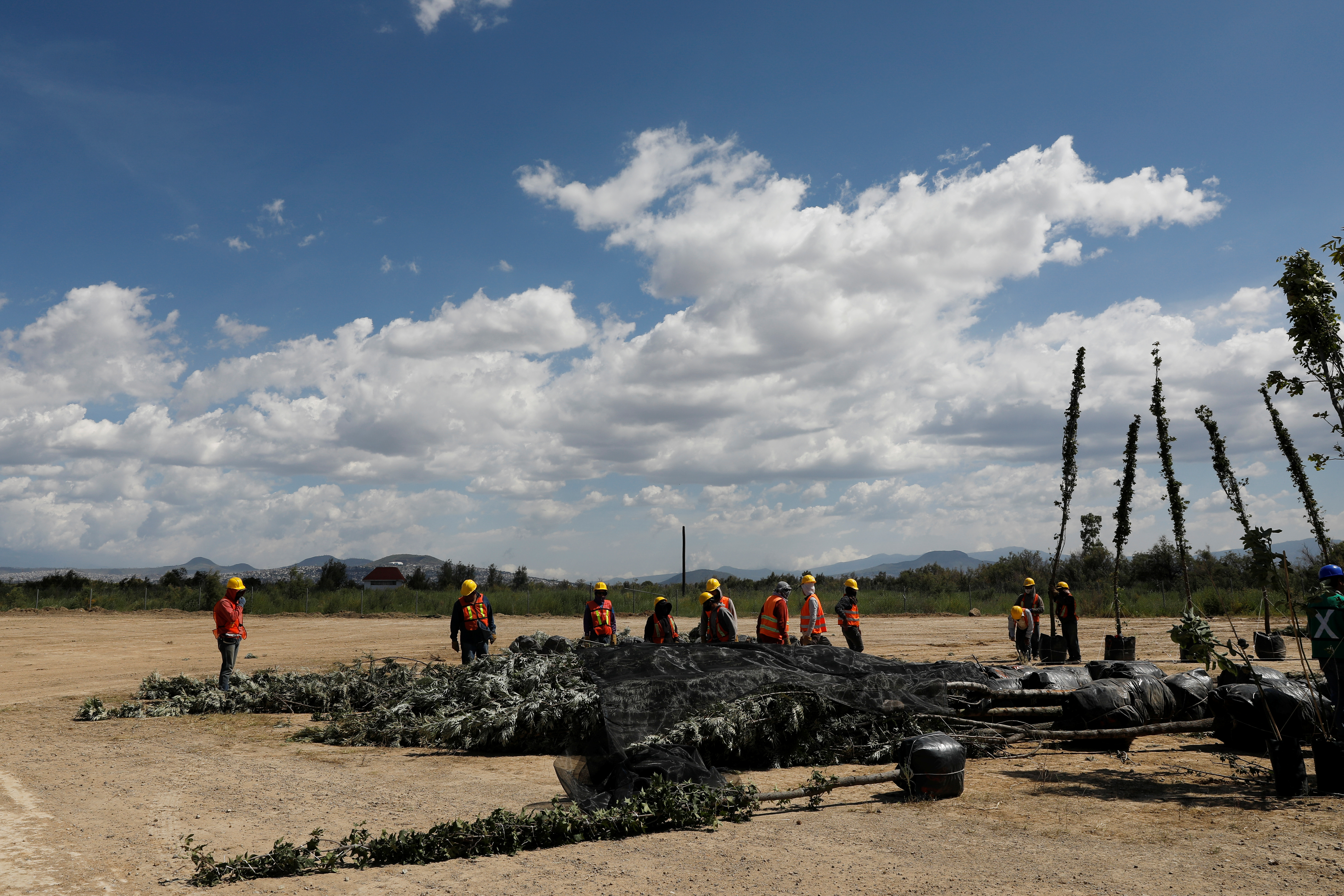 Trabajadores preparan plantas nativas en el centro de jardinería cerca de la zona cancelada del aeropuerto como parte de un proyecto para conservar 12,200 hectáreas de tierra en Texcoco en las afueras de la Ciudad de México, México, 3 de septiembre de 2020. Fotografía tomada el 3 de septiembre de 2020.