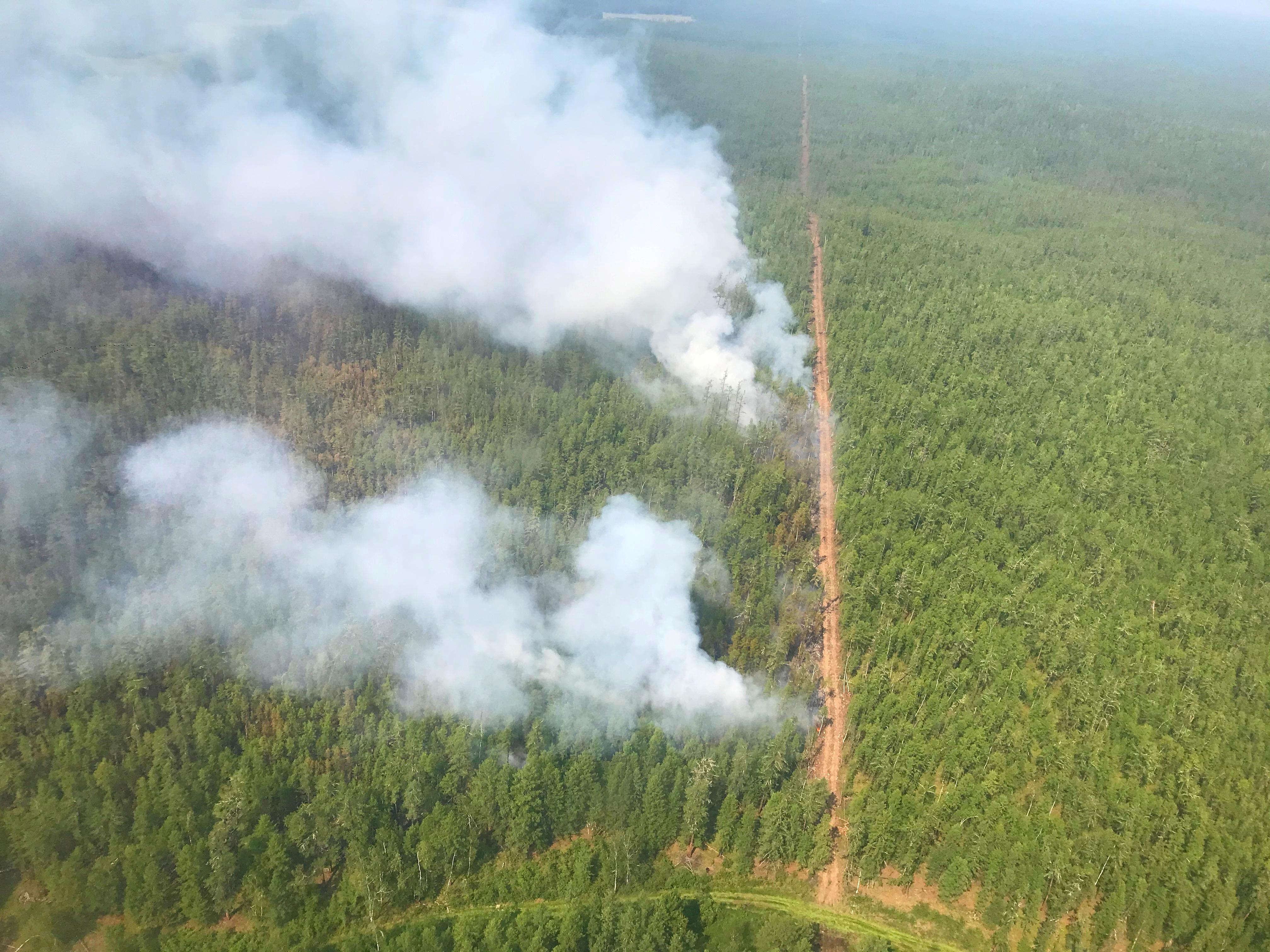 (Servicio Aéreo de Protección Forestal via REUTERS)