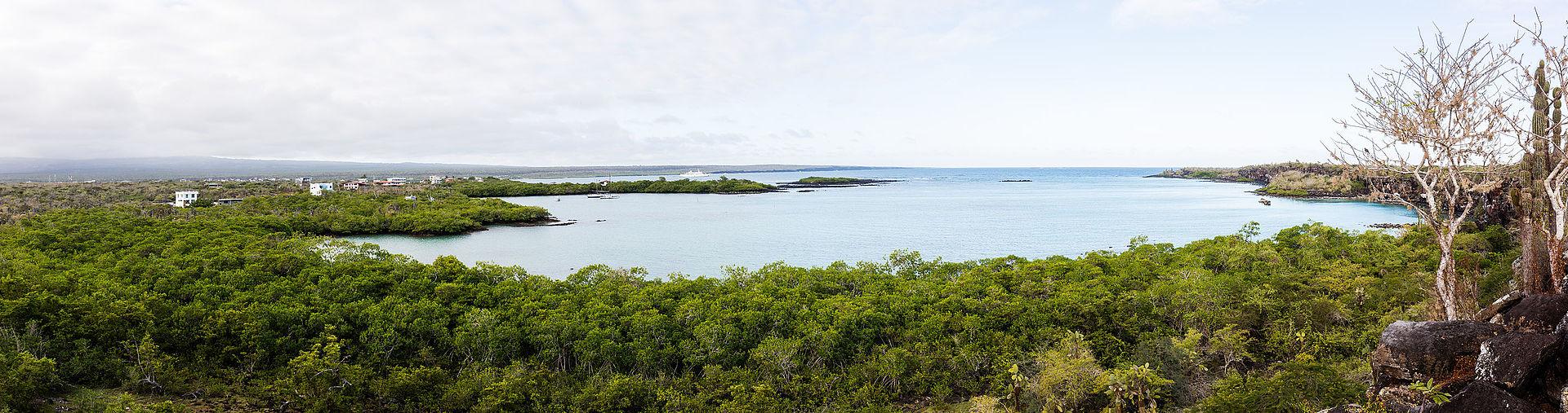 Isla Santa Cruz, Galápagos (Foto: Diego Delso)