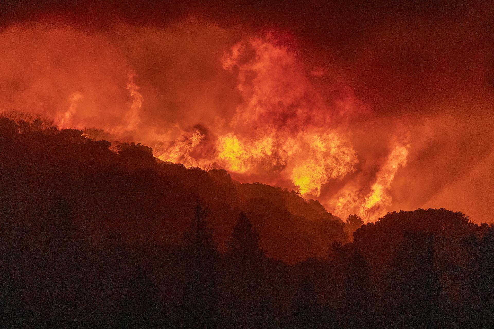 """La región ha visto muchos incendios importantes en los últimos años, pero el supervisor forestal del Bosque Nacional Sierra, Dean Gould, dijo en la sesión informativa del lunes por la noche que el incendio de Creek era probablemente el más agresivo y """"es único en su clase"""". (David McNew/Getty Images/AFP)"""