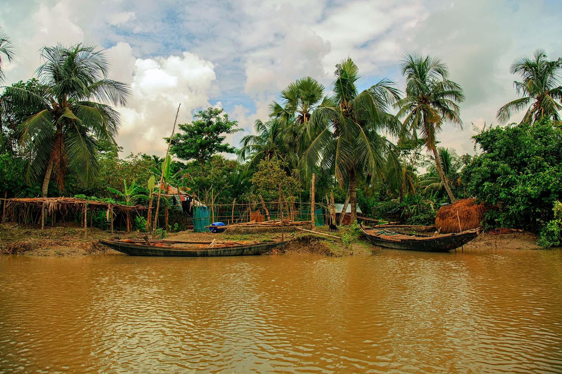 El bosque de la reserva de Sundarbans está a lo largo del delta de los ríos Ganges, Brahmaputra y Meghna. El bosque de manglar es el más grande del mundo, con un 60% del área en Bangladesh y el resto en India. Los Sundarbans, declarados Patrimonio de la Humanidad por la UNESCO, sirven como hábitat excepcionalmente diverso para una gran cantidad de plantas y animales, incluido el tigre real de Bengala