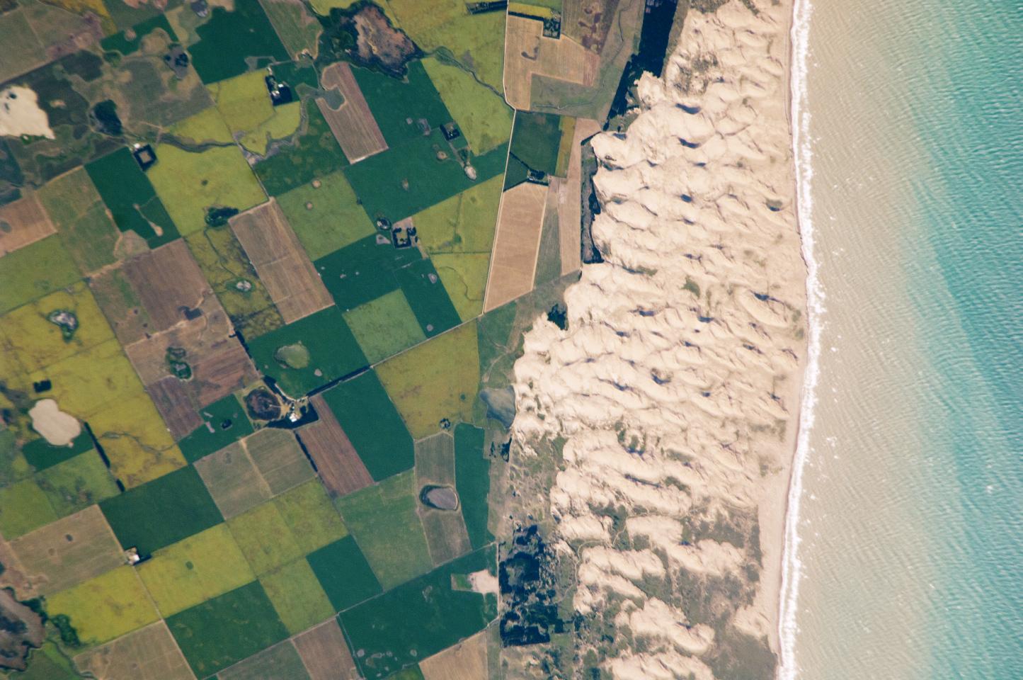 Dunas costeras del Médano Blanco, Argentina