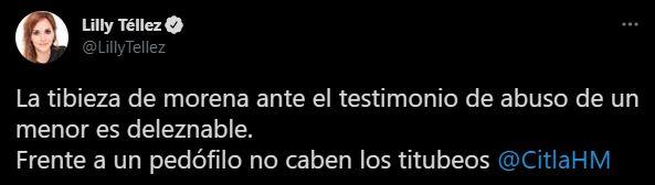 Debido a las declaraciones de la morenista, Lilly Téllez la llamó tibia (Foto: Twitter/LillyTellez)