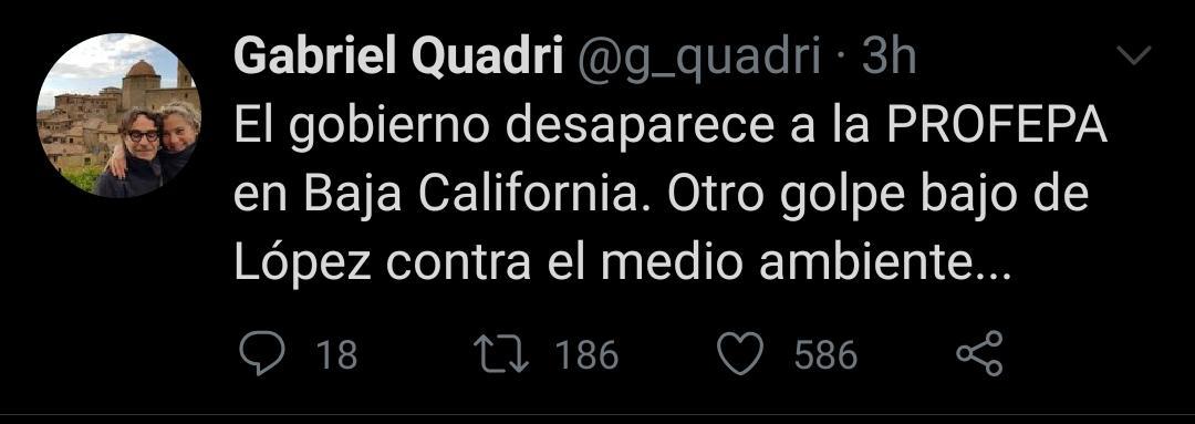 El diputado nuevamente se lanzó contra AMLO a través de Twitter (Foto: Twitter/@g_quadri)