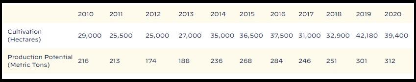 Las cifras anuales de cultivos y potencial producción de cocaína