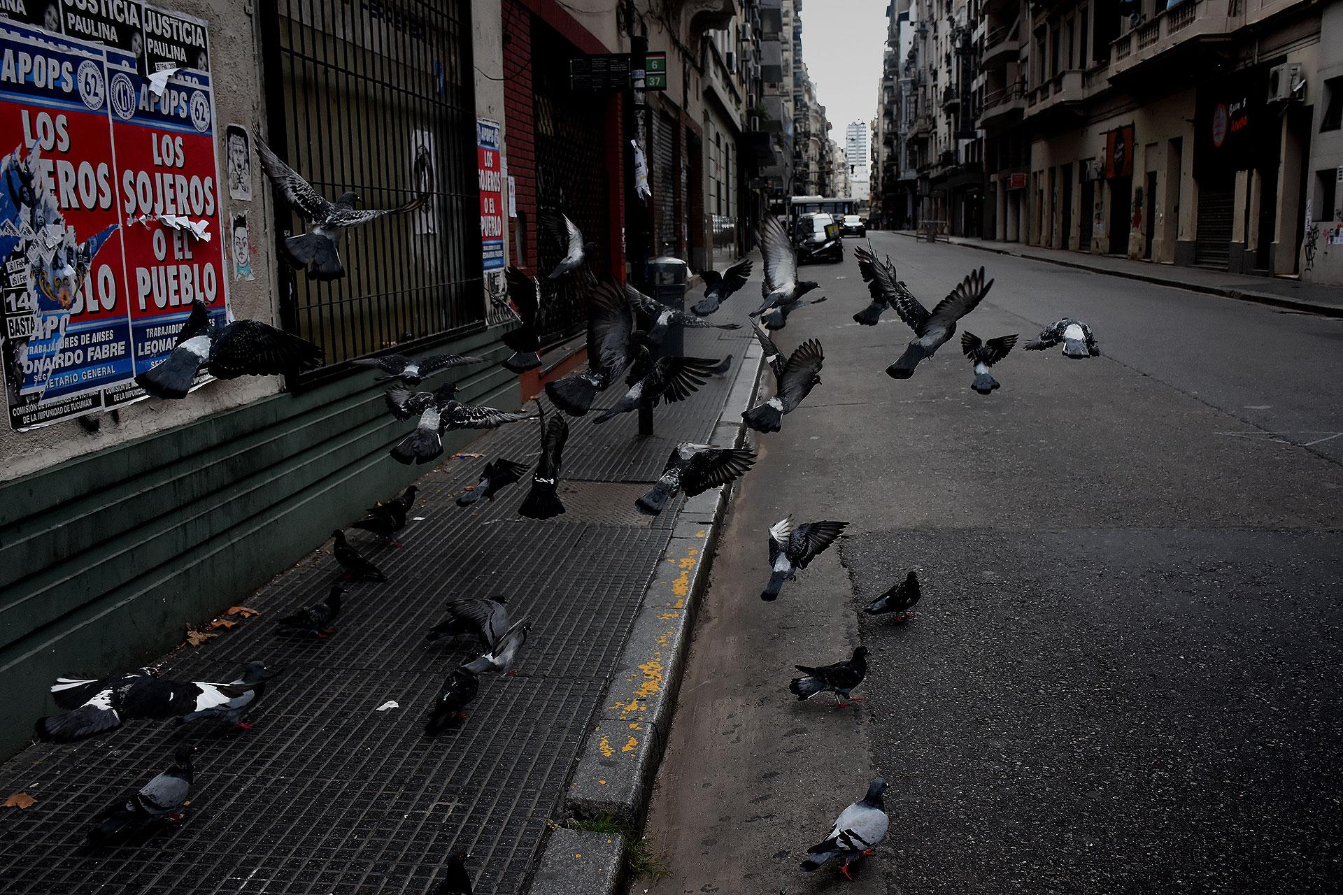 Las calles del centro porteño están sin autos ni peatones