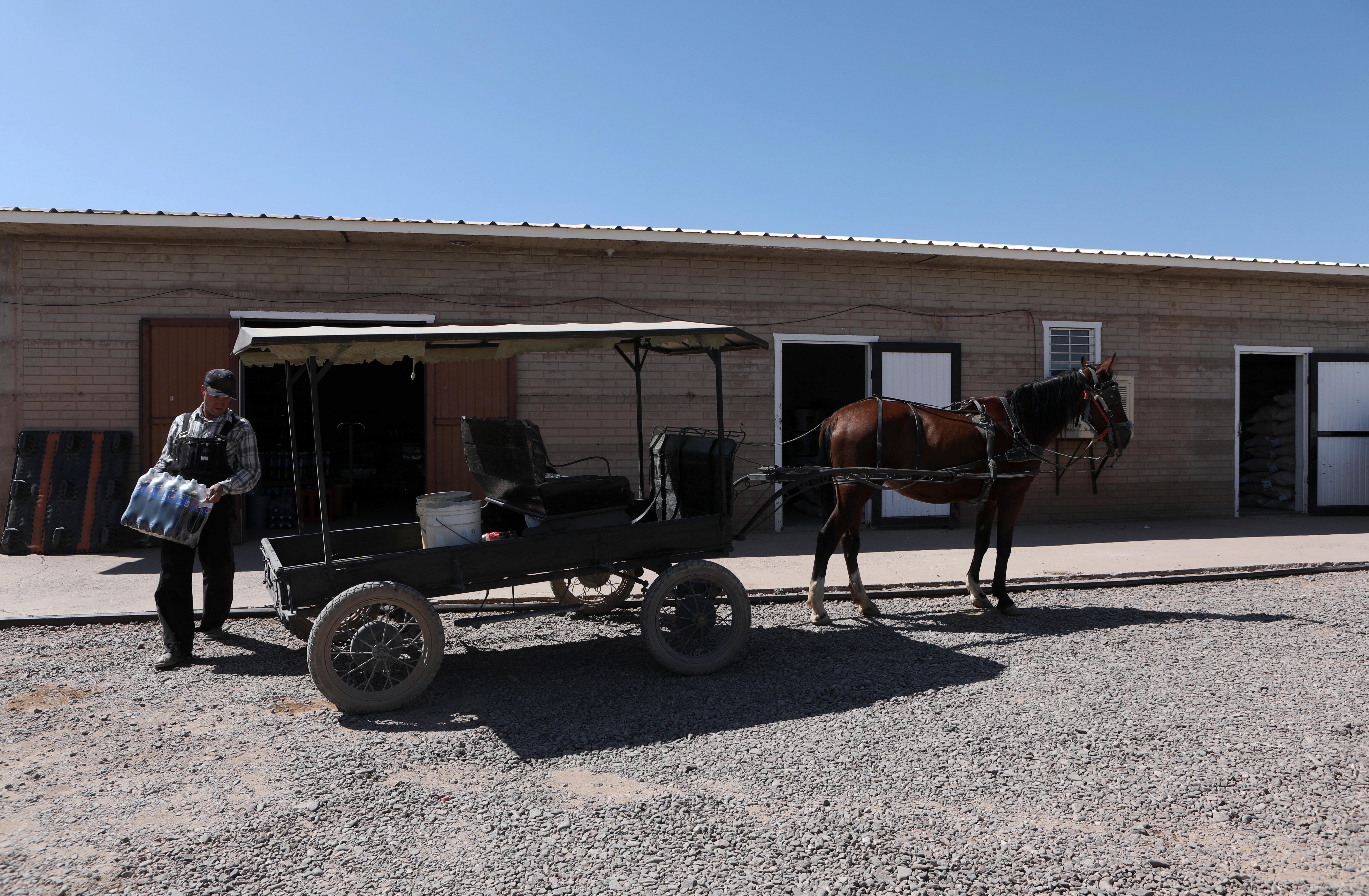 Un hombre menonita carga una caja de refrescos en un carro tirado por caballos en una comunidad menonita en el municipio de Ascensión estado de Chihuahua, México, el 26 de septiembre de 2020.