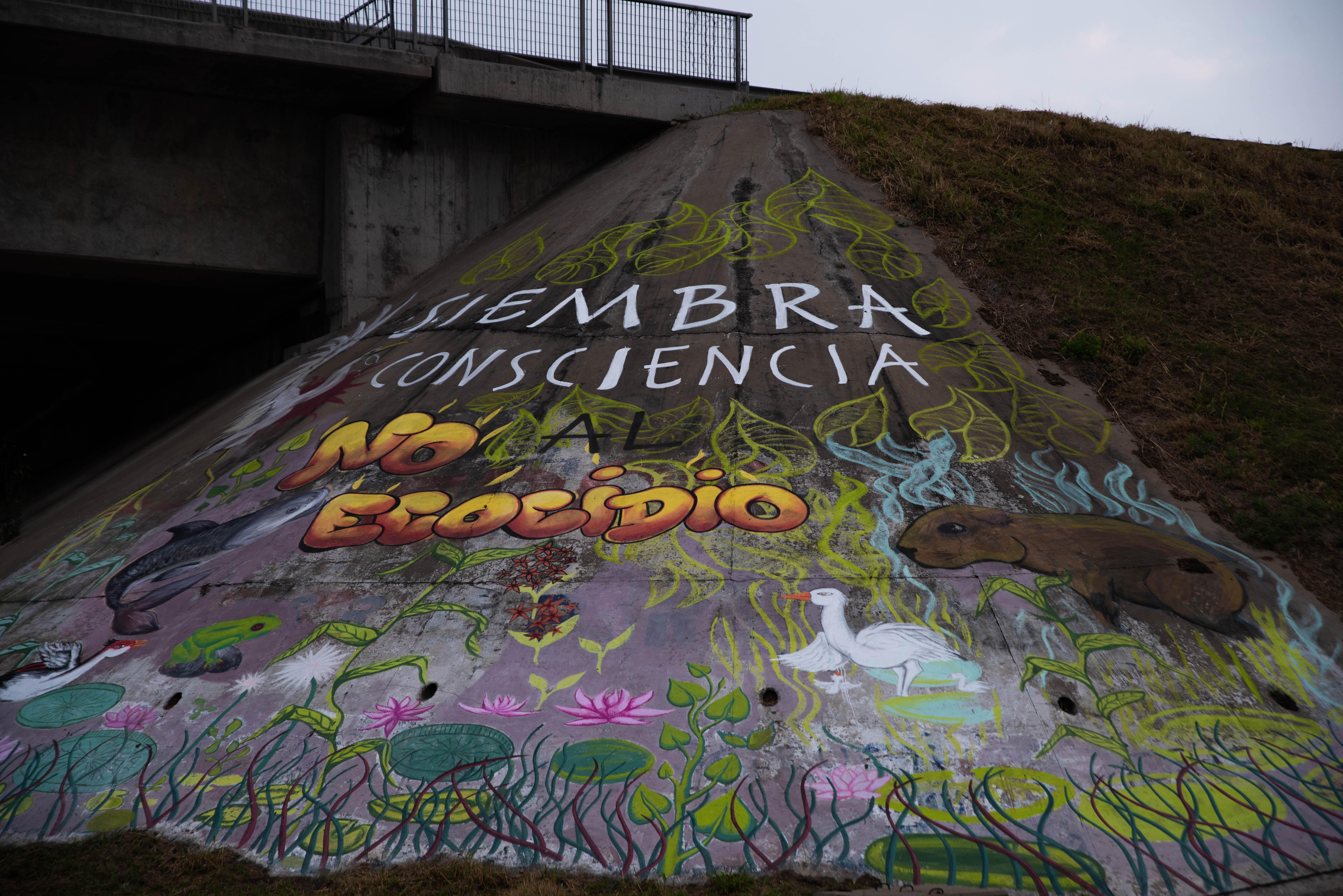 Las agrupaciones de ecologísticas y que luchan por el cuidado del medio ambiente se manifestaron el último fin de semana en Rosario