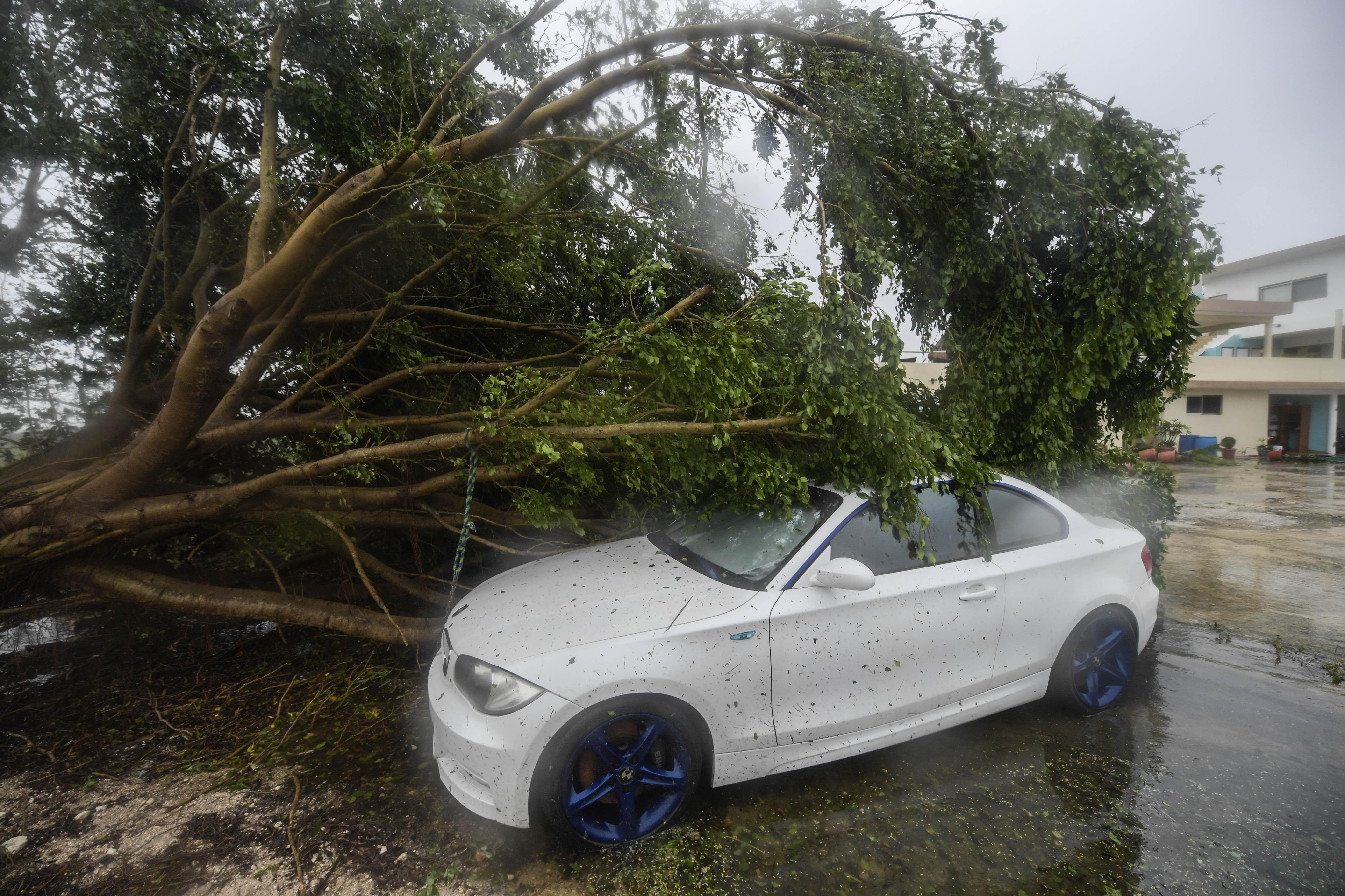Un automóvil se cubre debajo de un árbol caído tras el paso del huracán Delta, en Cancún, estado de Quintana Roo, México, el 7 de octubre de 2020.