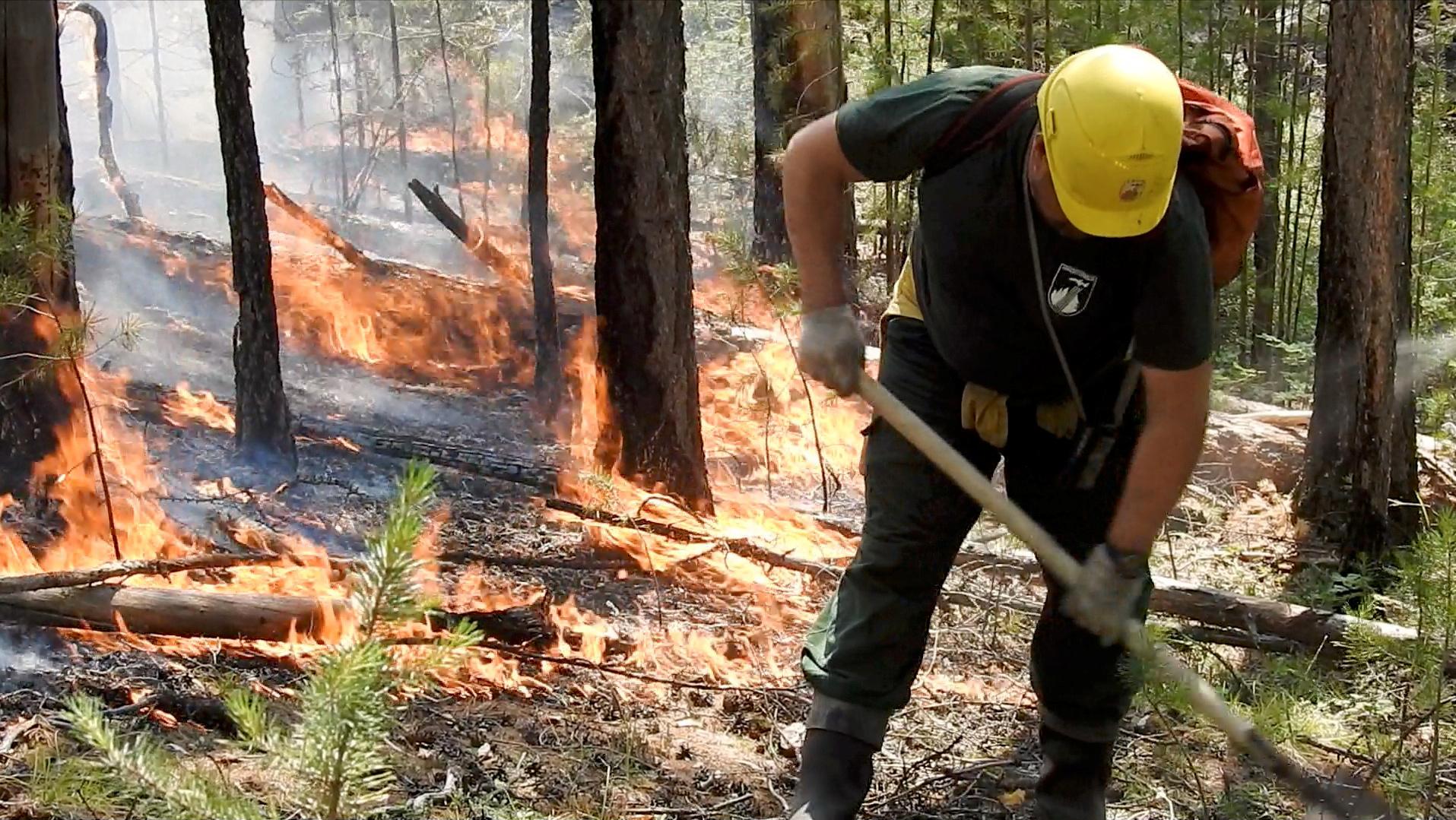 El incendio forestal en la región de Yakutia (Servicio Aéreo de Protección Forestal via REUTERS)