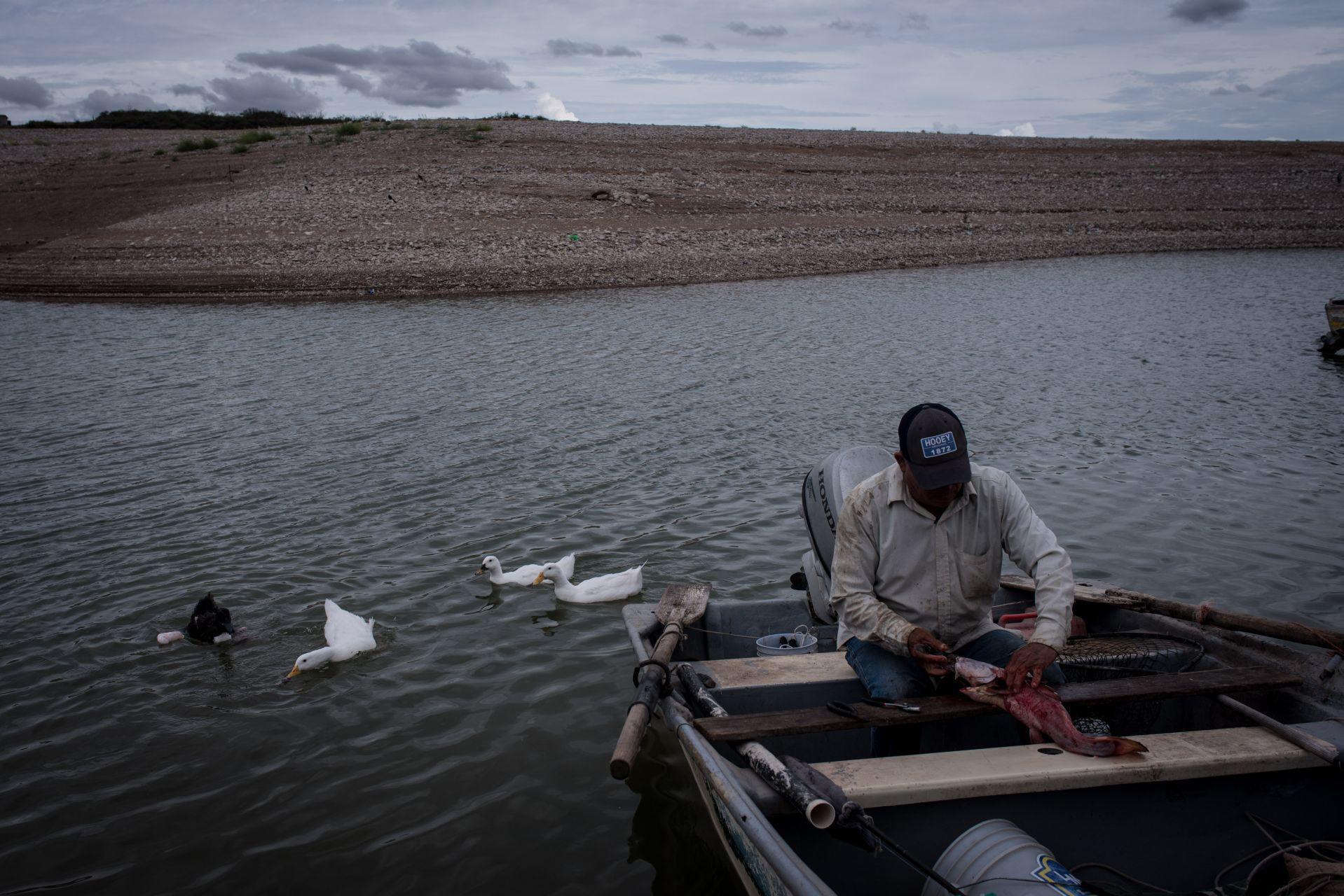 El pescador Pedro quita la piel a su pesca después de su jornada. San Francisco de Conchos, Chihuahua, México. El 18 de septiembre de 2020.