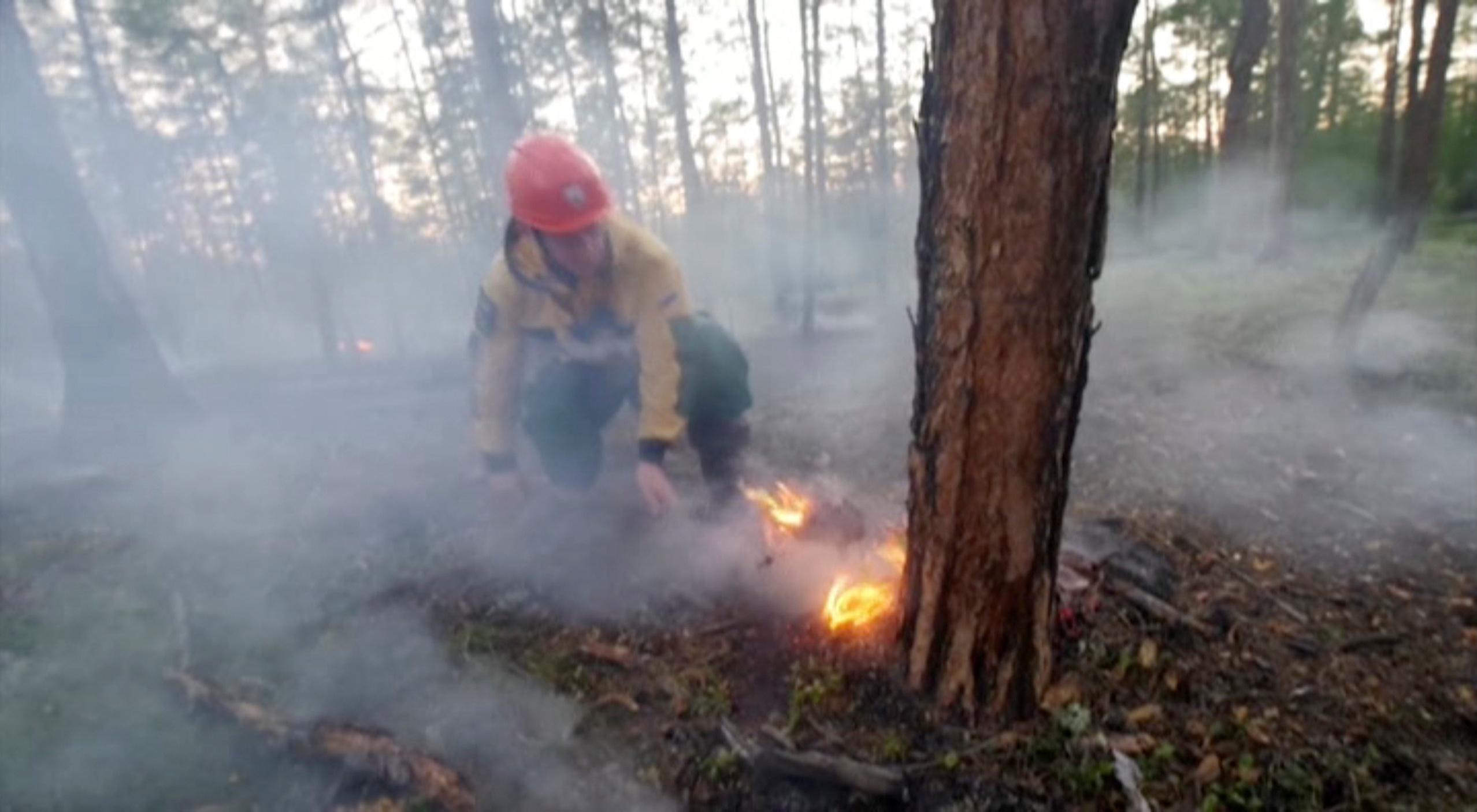Un especialista en la región de Yakutia (Servicio Aéreo Ruso de protección forestal via REUTERS)