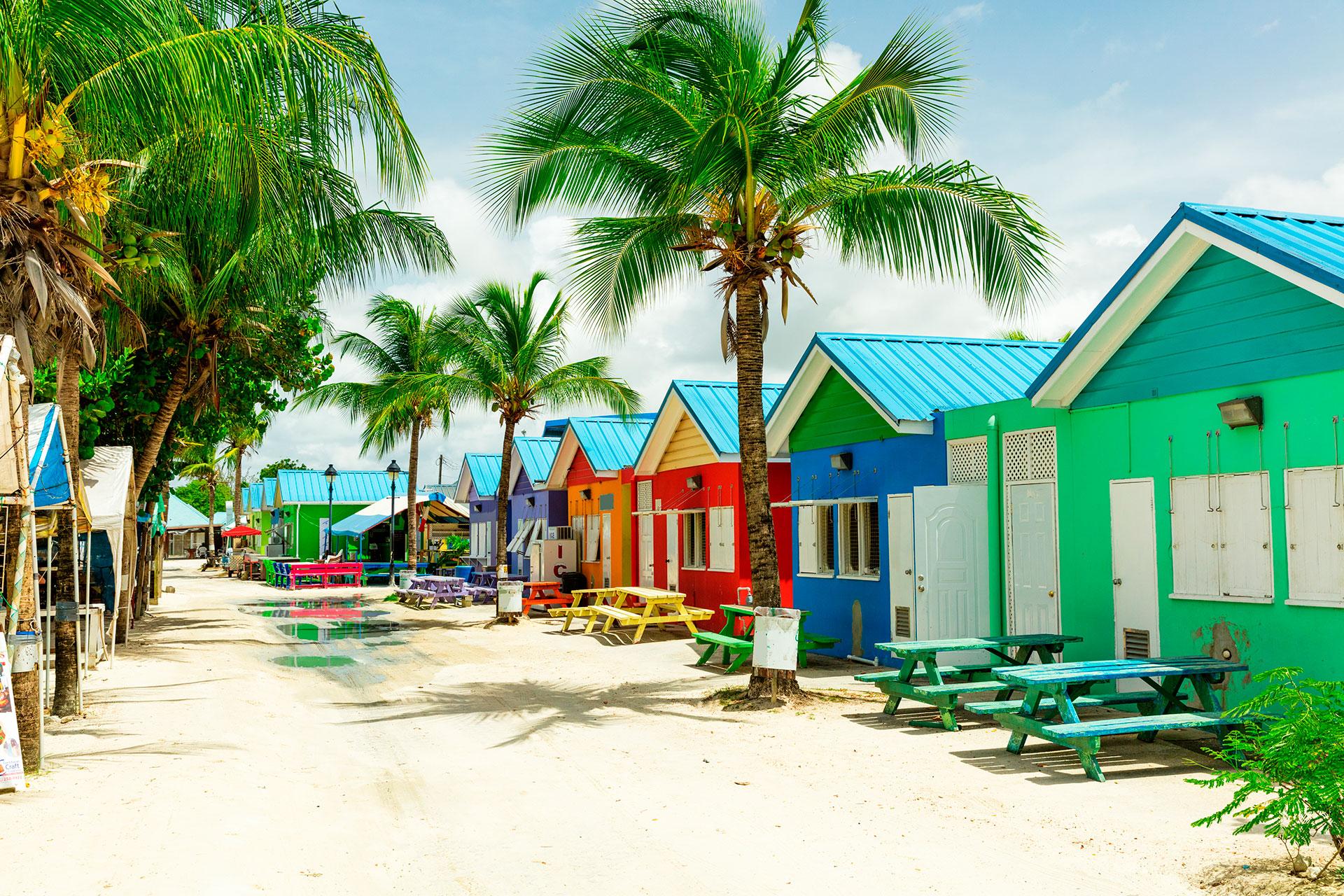 Barbados tiene algo para todos: playas de arena rosada, vida silvestre exótica (monos, tortugas marinas y ocho especies de murciélagos) y puestas de sol que piden ser disfrutadas con un cóctel fresco. Bridgetown, la capital, es un puerto de cruceros con edificios coloniales y la sinagoga Nidhe Israel, fundada en 1654. Cerca de la isla, hay playas, jardines botánicos, la formación de Harrison's Cave y las haciendas del siglo XVII