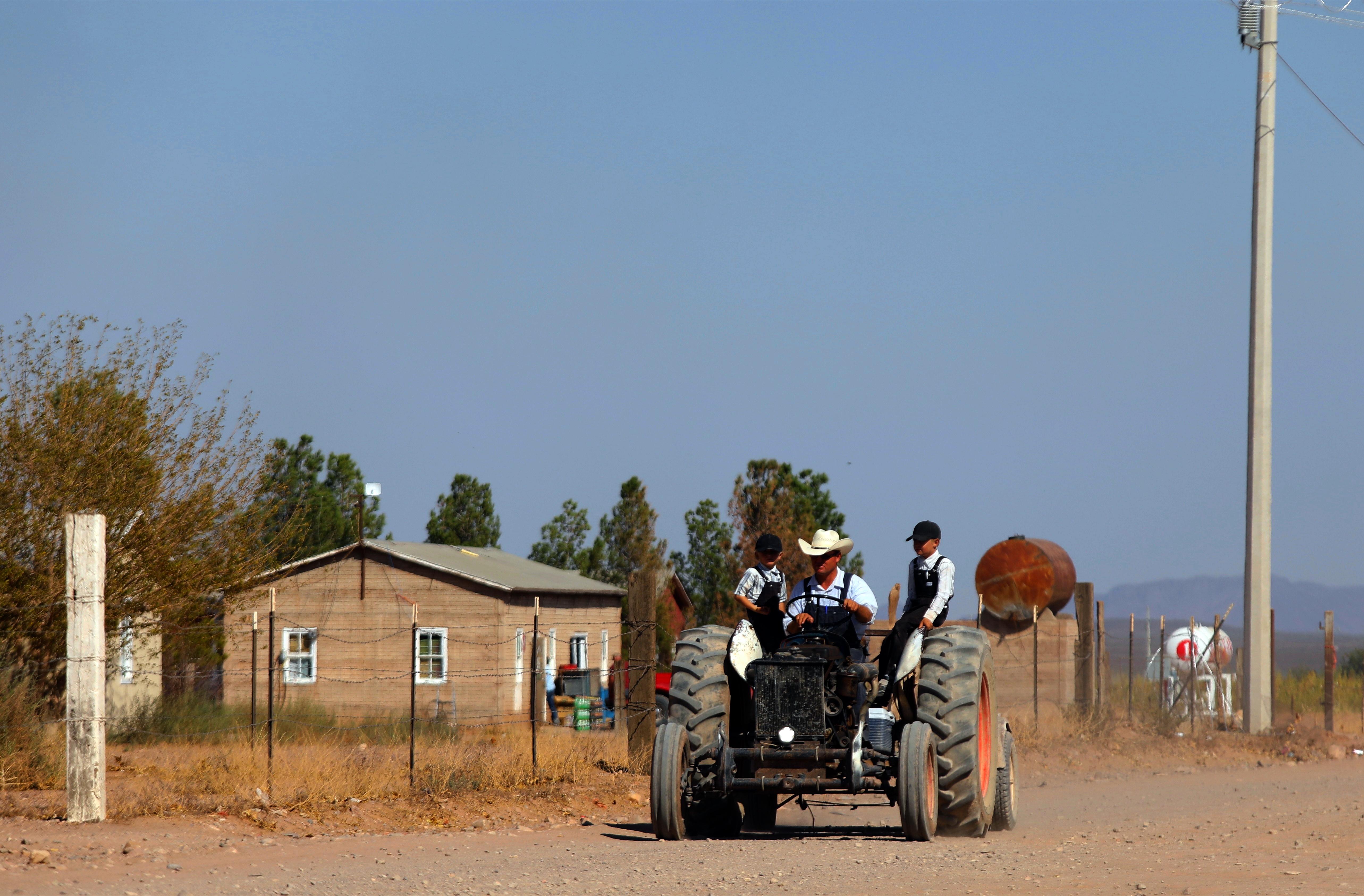 Un hombre menonita conduce un tractor en una comunidad menonita en el municipio de Ascensión, estado de Chihuahua, México, el 26 de septiembre de 2020.