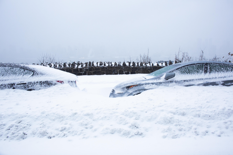 Autos cubiertos de nieve en Weehawken, Nueva Jersey (Kena Betancur / AFP)