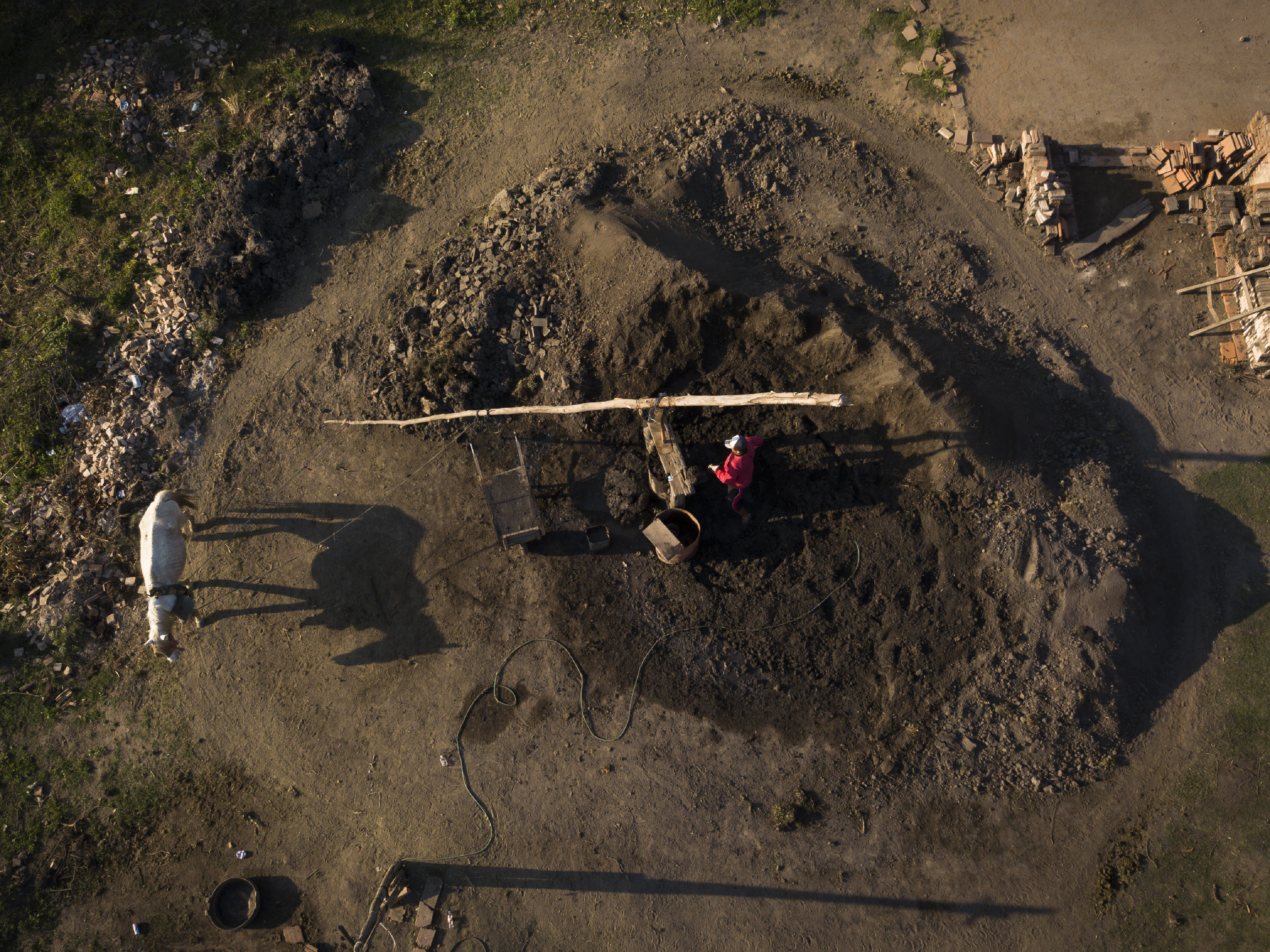 Un trabajador pone arcilla en un agujero alrededor del cual un burro mueve la rueda que amasa la mezcla en una fábrica de ladrillos familiar en Tobati, Paraguay, el viernes 4 de septiembre de 2020.