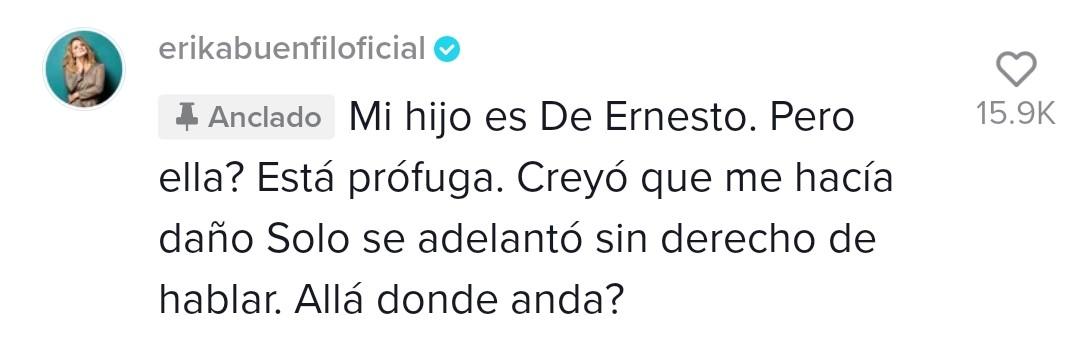 Erika Buenfil recordó un desafortunado incidente con Inés Gómez Mont y se lanzó en su contra (Captura de pantalla Tik Tok: @erikabuenfiloficial)