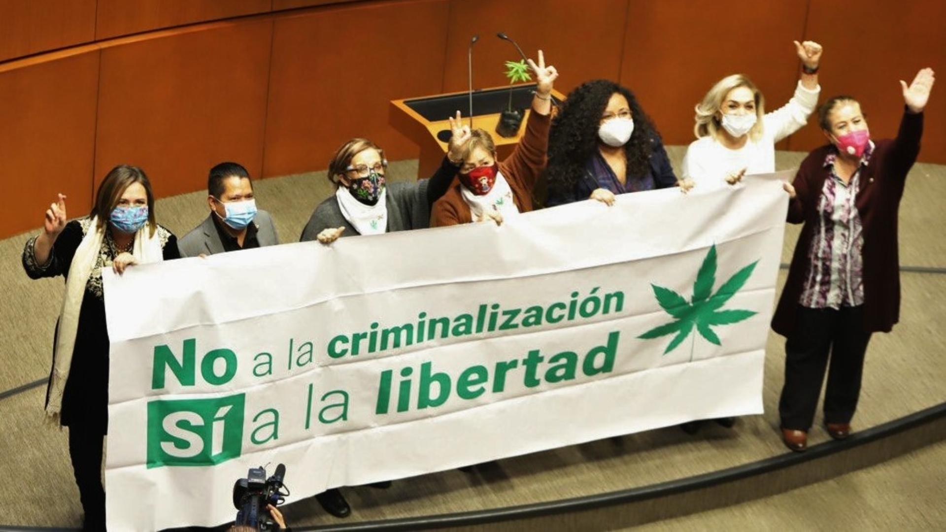 México se convertirá en el mercado legal de cannabis más grande del  mundo... pero eso no le ayudará a combatir al crimen organizado: la dura  advertencia del WSJ - Infobae