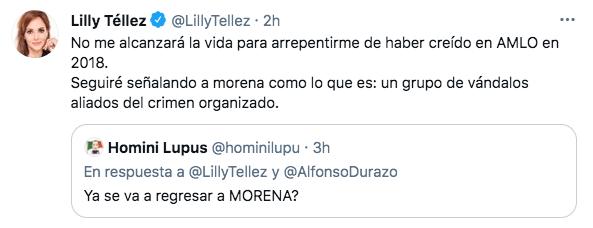 "Lilly Téllez aseguró que ""seguirá señalando a Morena como lo que es: un grupo de vándalos aliados del crimen organizado (Foto: Twitter@LillyTellez)"