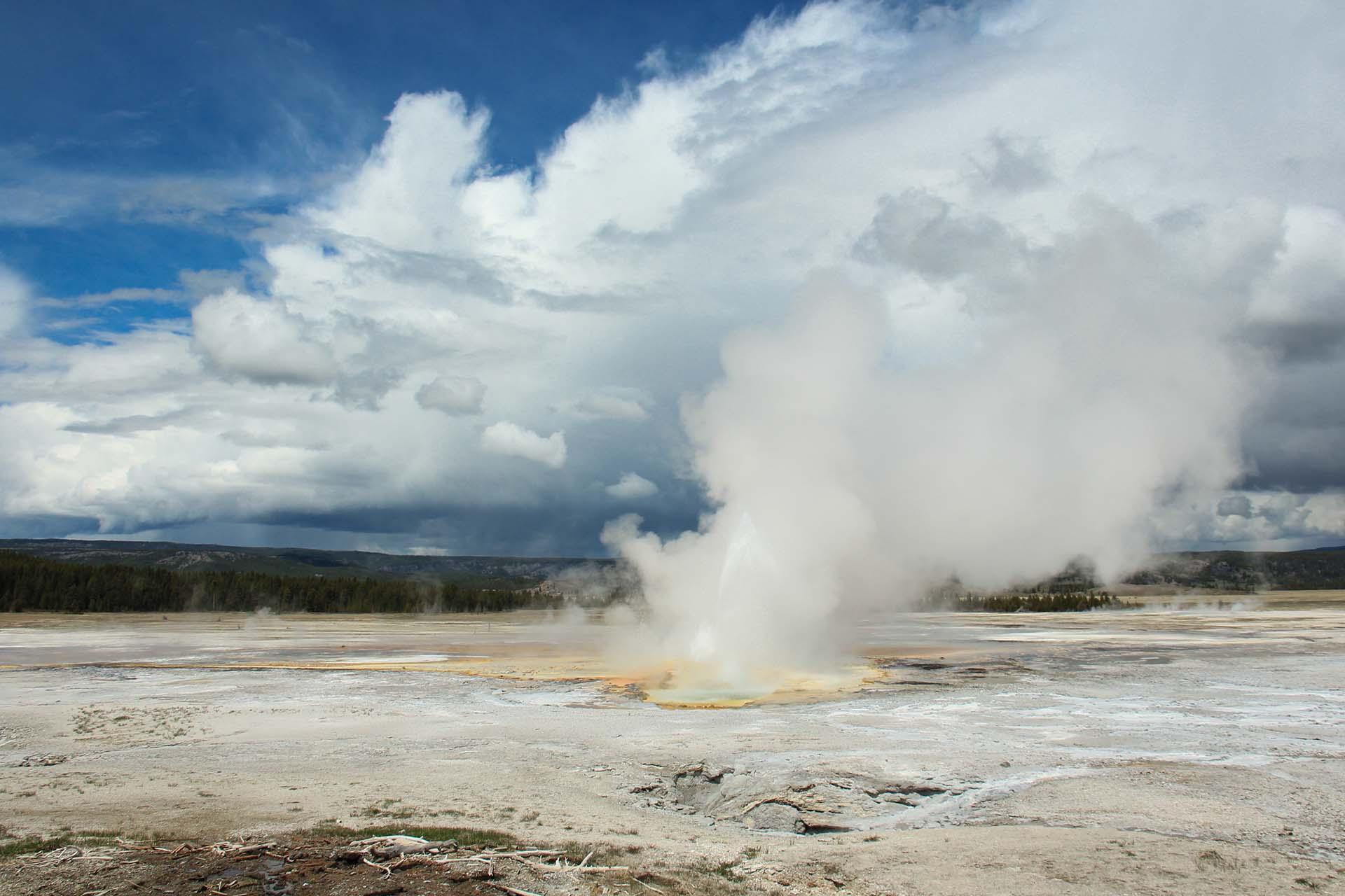Encontrado en la cuenca del géiser Norris en Wyoming, cuando el géiser Steamboat entra en erupción, el agua puede disparar hasta 90 metros de altura. El géiser Waimangu en Nueva Zelanda, cerca del lago Frying Pan, ha disparado agua a alturas aún mayores, pero no en los últimos 100 años