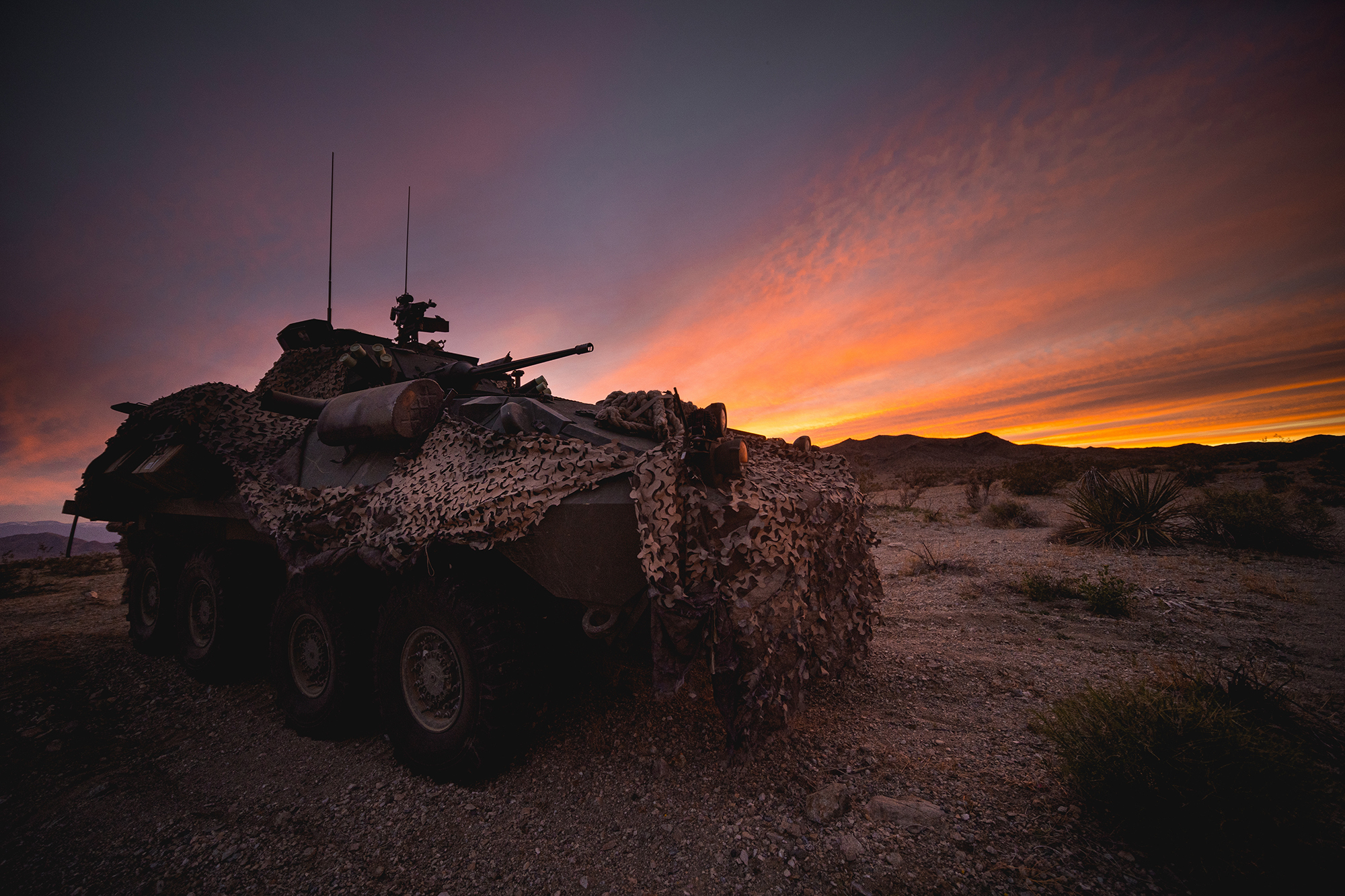 A Light Armored Vehicle-25 is used to secure a position during a Marine Corps combat readiness evaluation at Marine Corps Air Ground Combat Center Twentynine Palms, Calif., March 31, 2020. (Cpl. Corey A. Mathews/Marine Corps)