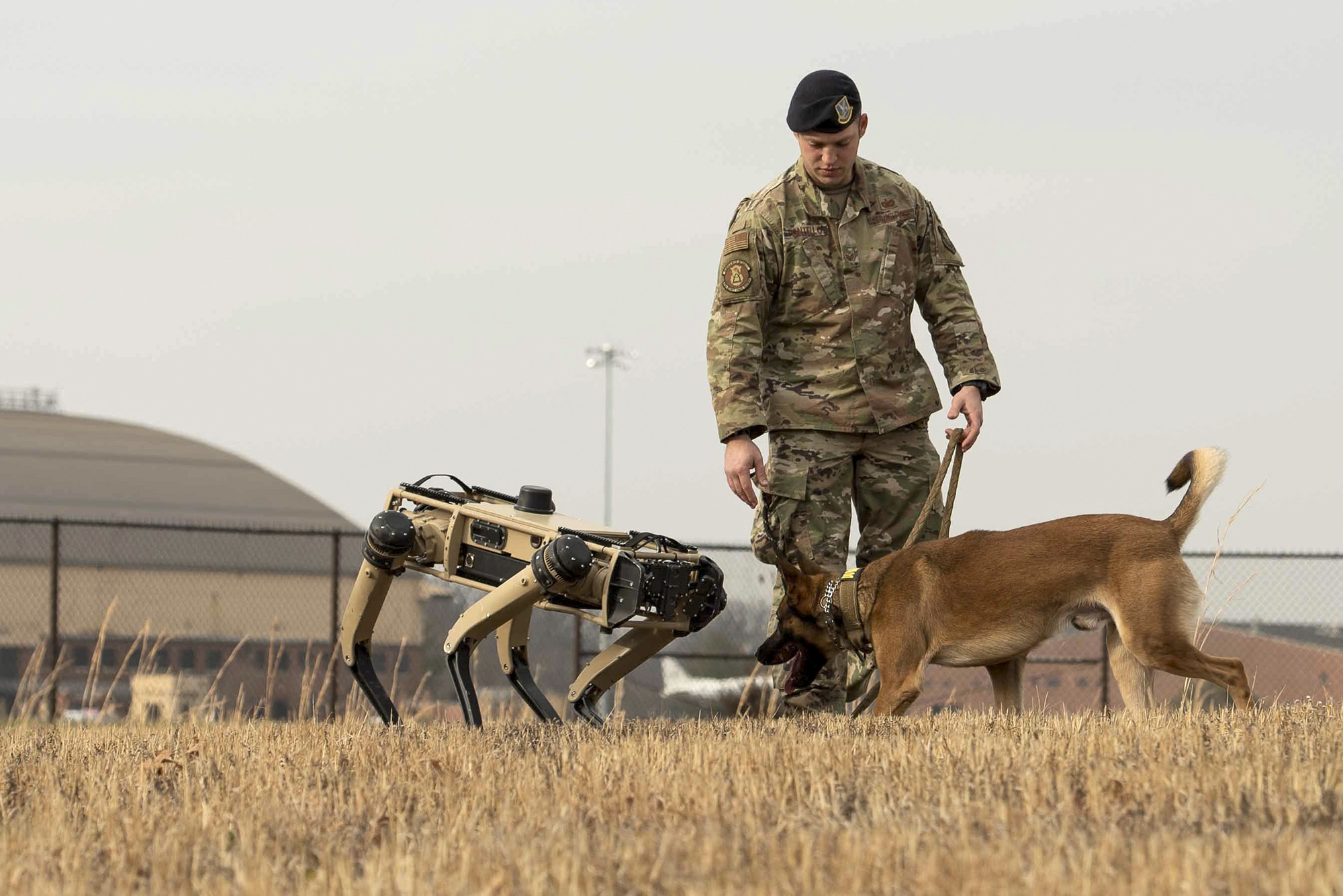 U.S. Air Force Staff Sgt. Carmen Pontello, 375th Security Forces Squadron military working dog trainer, introduces Hammer to the Ghost Robotics Vision 60 at Scott Air Force Base, Ill., Dec. 17, 2020. (Airman 1st Class Shannon Moorehead/Air Force)