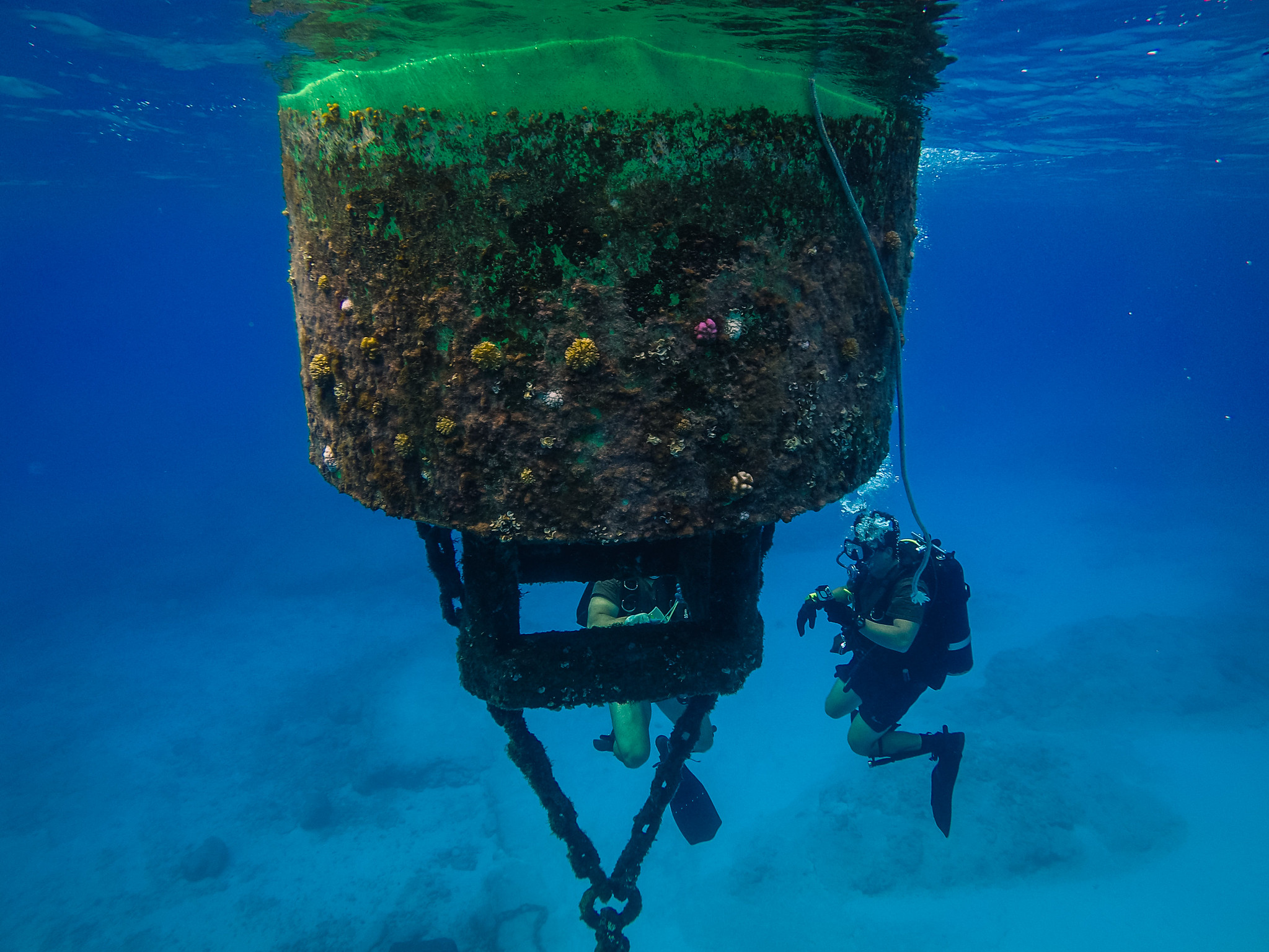 Steel Worker 3rd Class Andrew Cuellar, assigned to Underwater Construction Team (UCT) 2, Construction Dive Detachment Alfa, inspects a buoy within the Tinian Harbor on Oct. 1, 2020. (MC2 Cole C. Pielop/Navy)