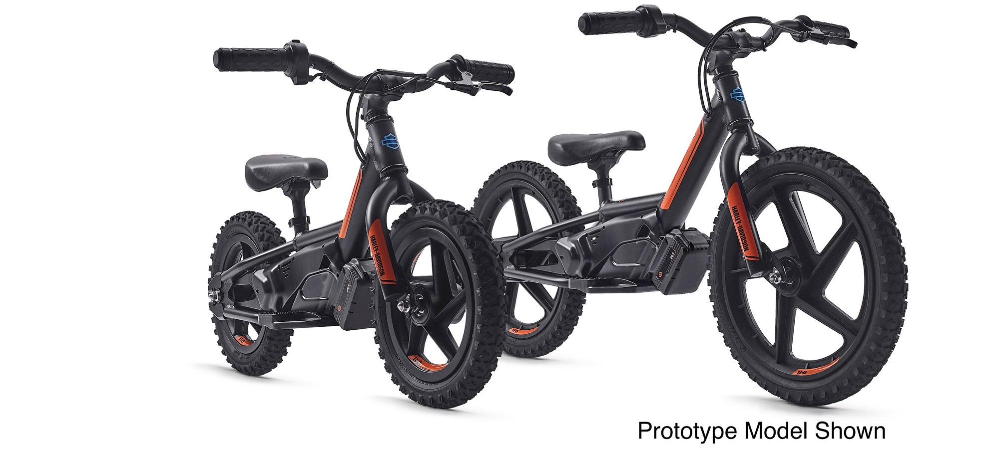 Harley-Davidson prototype electric bikes.