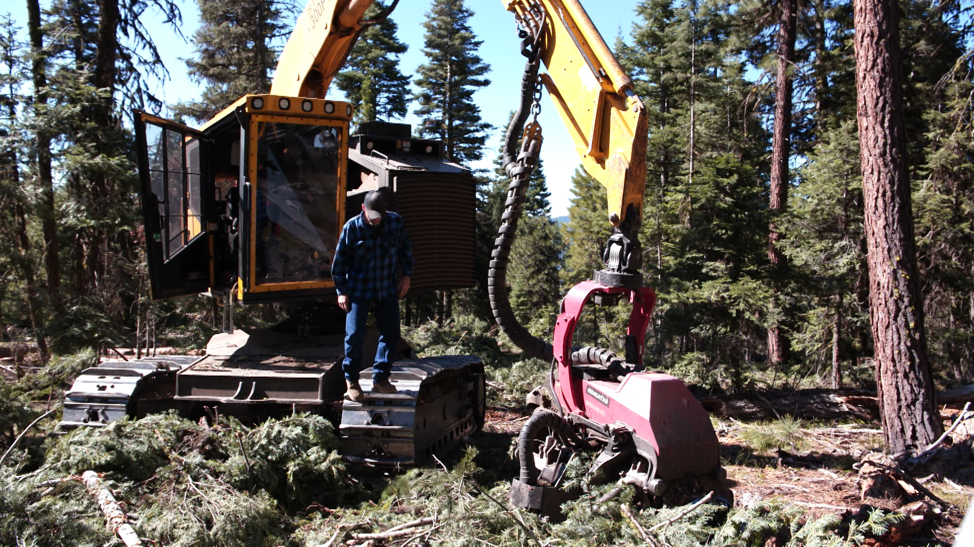 Iron Triangle LLC won the 10-year stewardship contract on the Malheur National Forest, which guarantees 10 years of forest restoration work like the thinning seen here, which  will also provide a sustained amount of timber to the local mill.