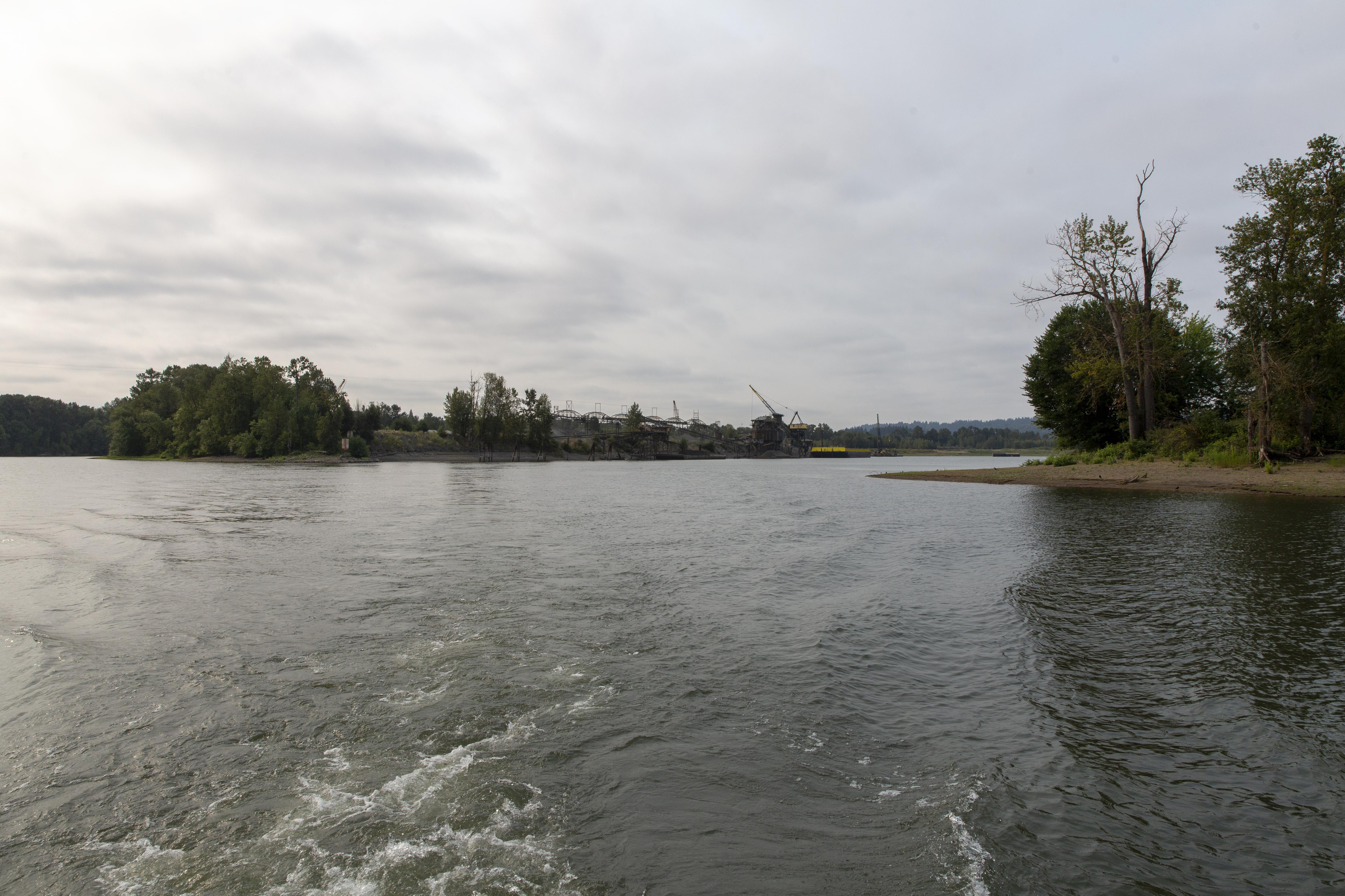 The Ross Island Lagoon is the site of a recent blue-green algae bloom contaminating the Willamette river.