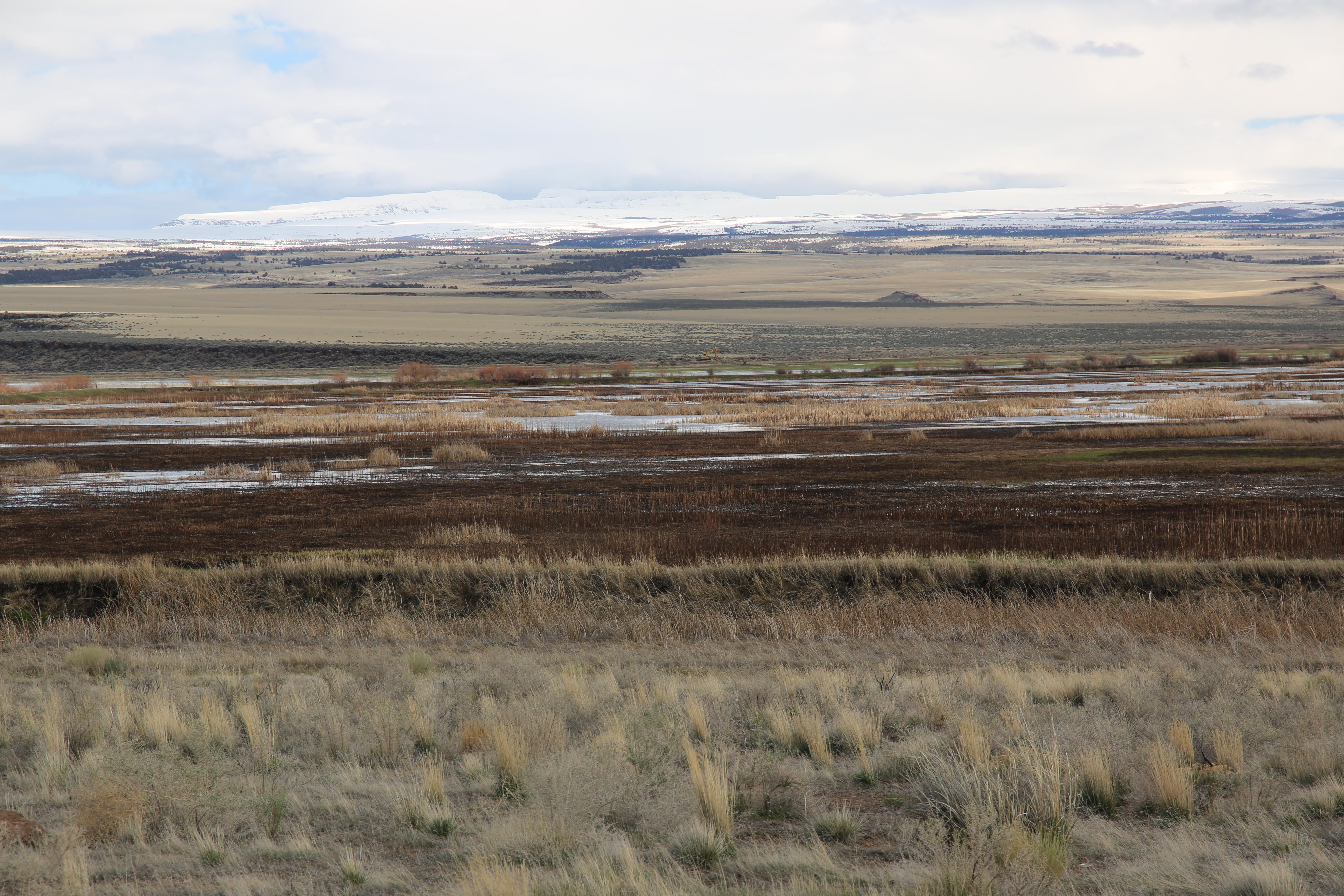 A view of the Steens Mountains from the Malheur National Wildlife Refuge on April 13, 2019.