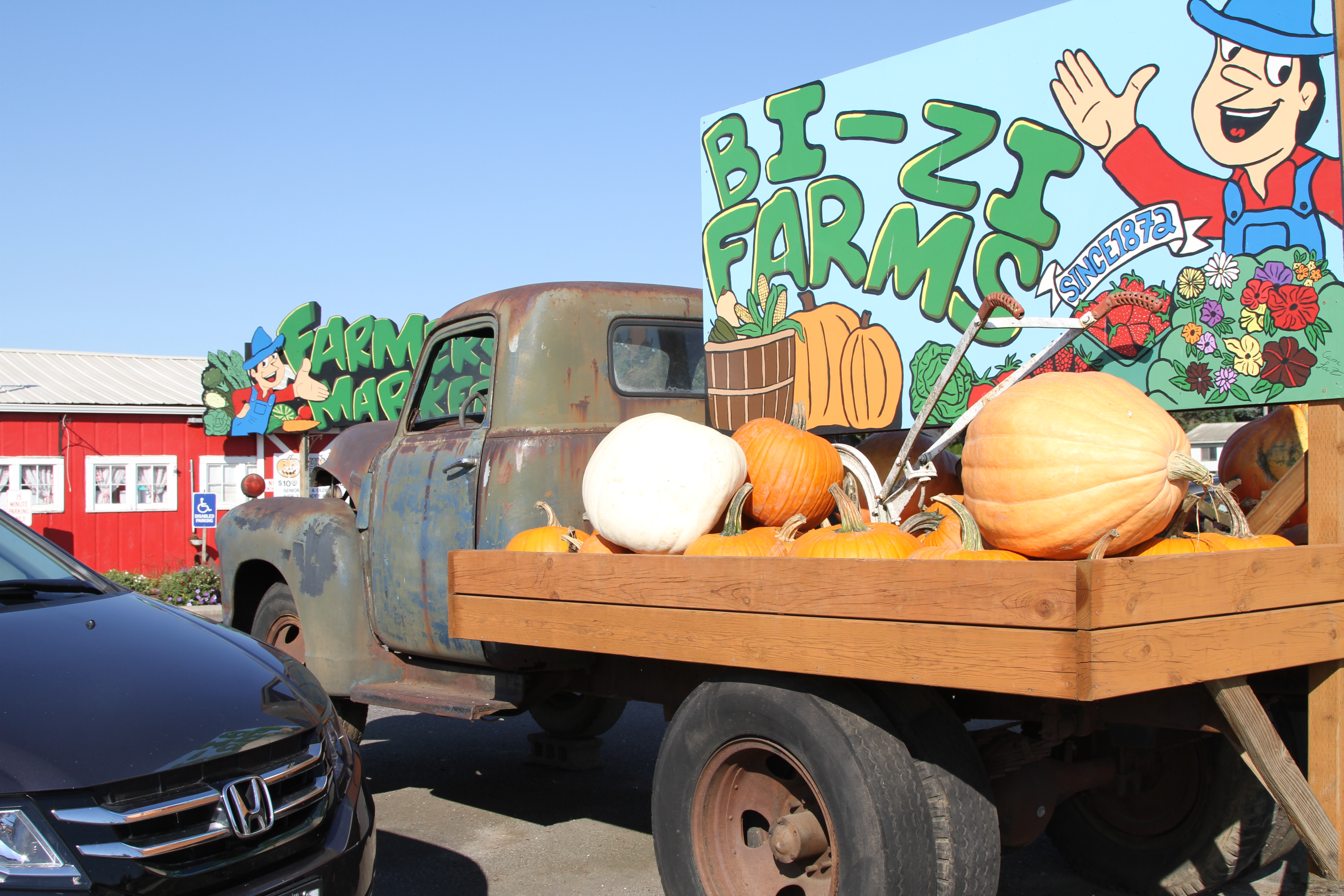 The only way to visit the Bi-Zi Farms pumpkin patch is to go online and book a ticket. Owners expect half the visitors they saw last year.