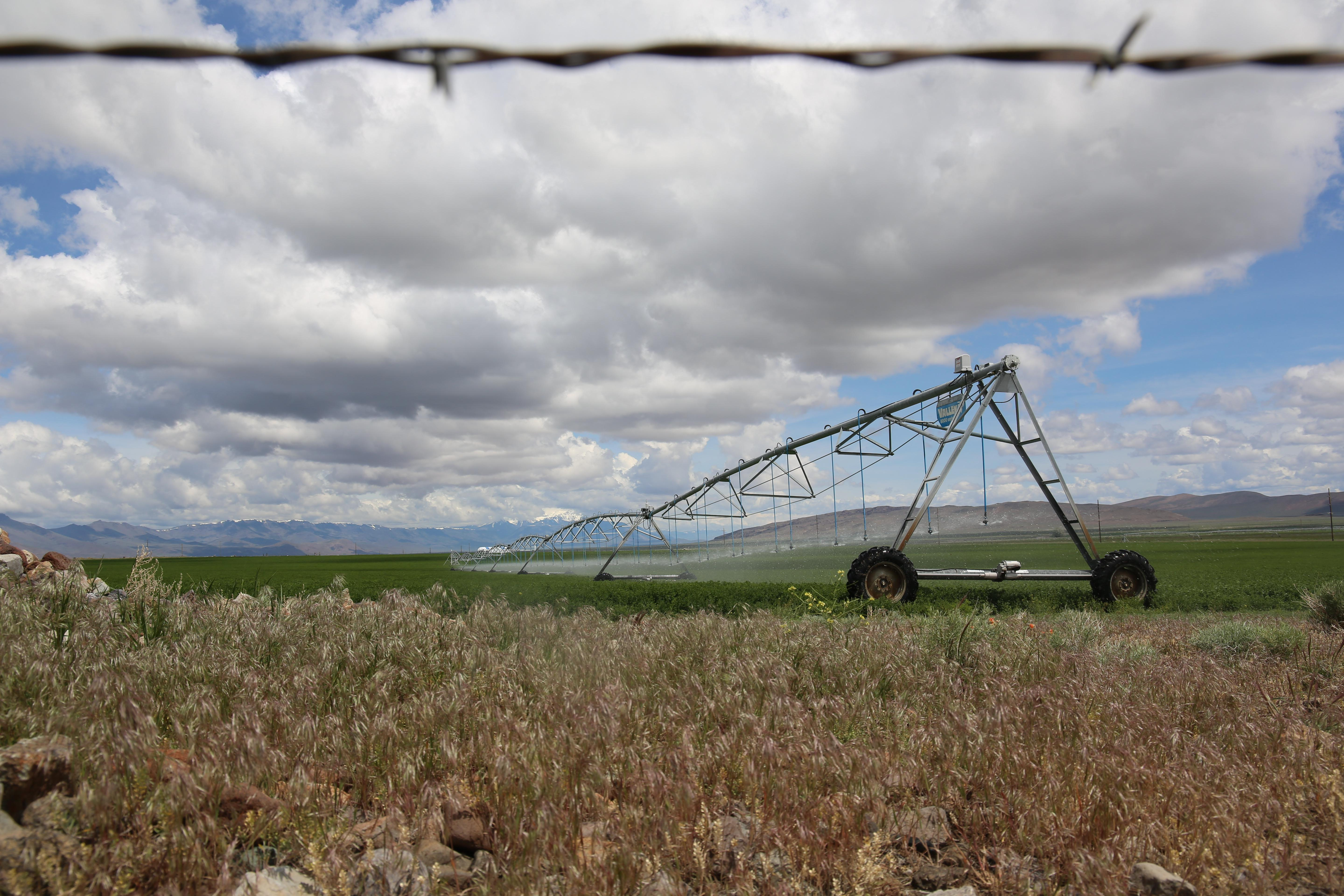 The hay grown in southeastern Oregon's Harney County feeds a global livestock market. But the industry relies on declining groundwater stores.