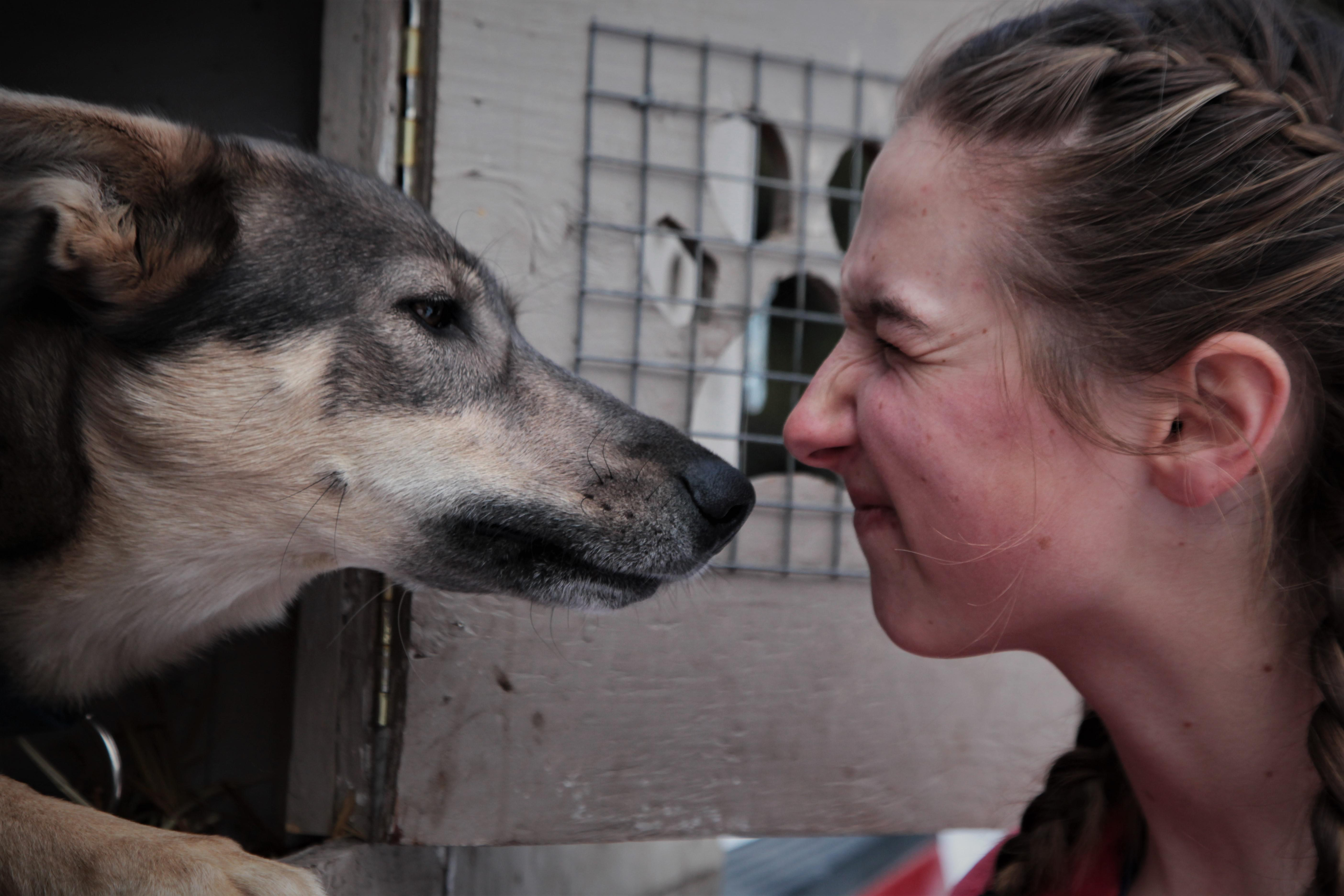 Morgan Anderson and her sled dogs share a special bond