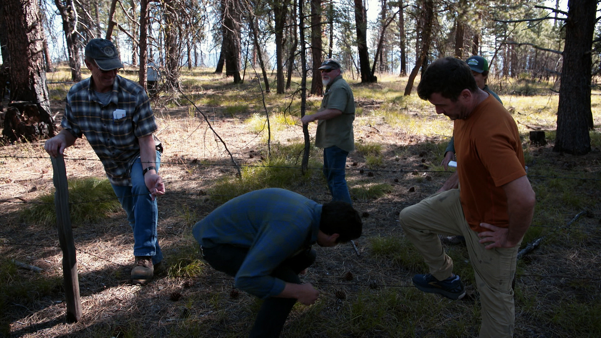 Loggers, environmentalists and scientists try to find common ground in the Malheur National Forest with a forest collaborative group called the Blue Mountains Forest Partners.