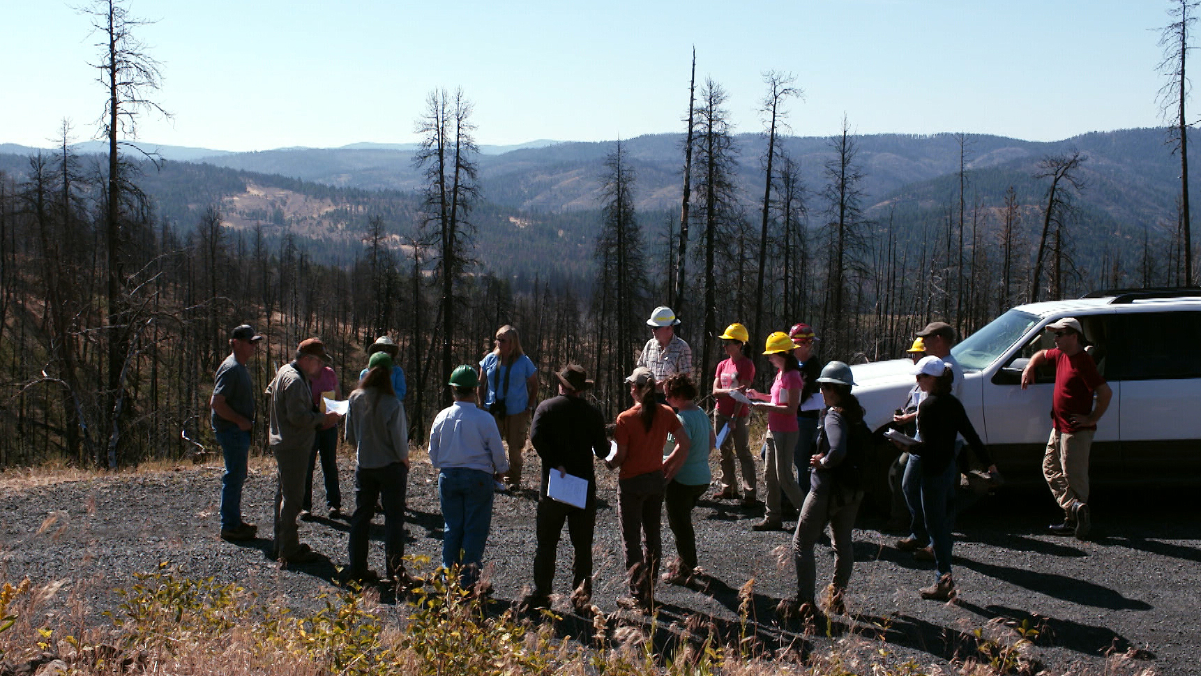 Members of the Blue Mountains Forest Partners circle up to look at one of the test sites in the Canyon Creek Complex fire that was logged to determine the effects of salvage logging on woodpecker survival.