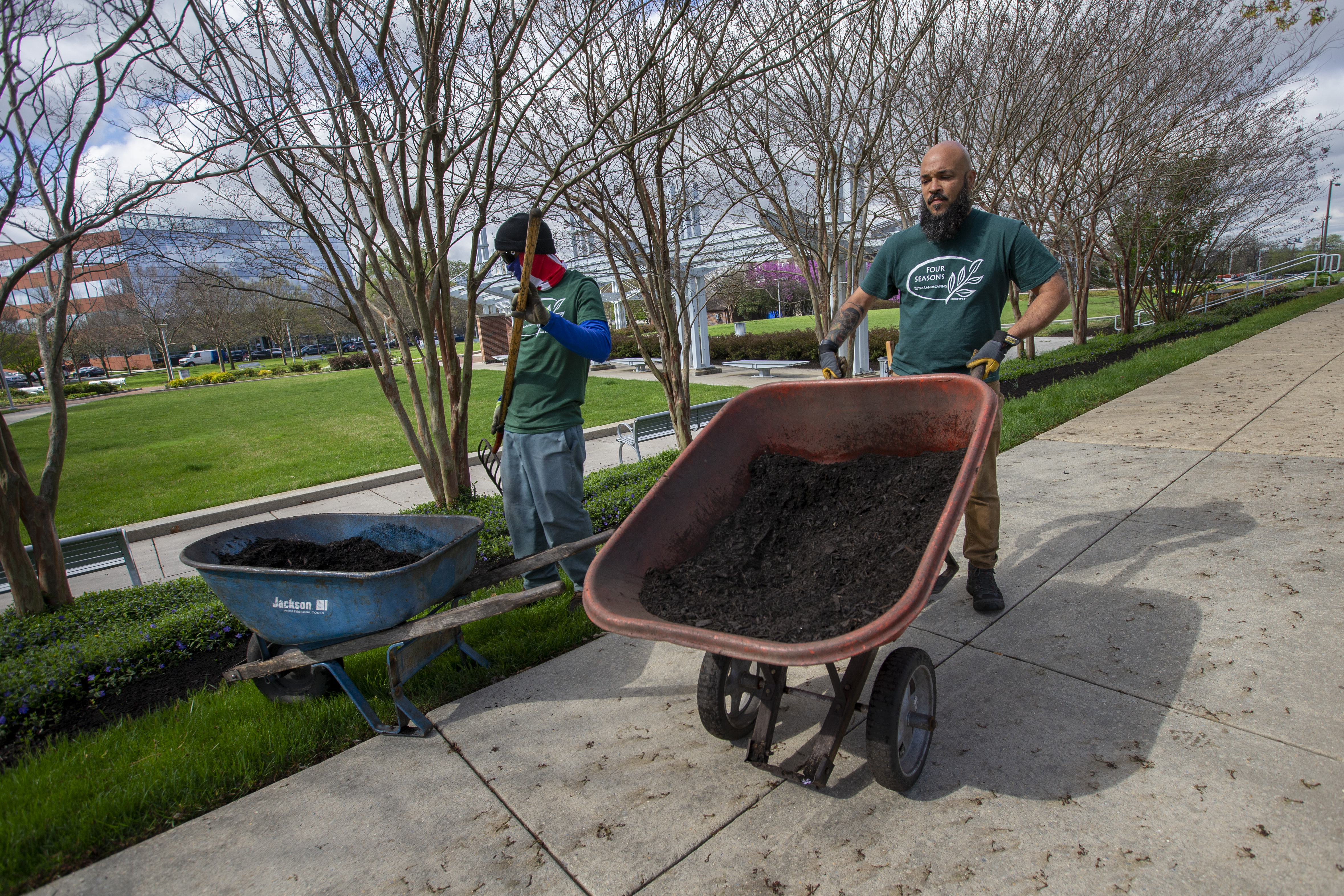 Cameron Corbett hauls a wheelbarrow of mulch on the job with Four Seasons Total Landscaping at the Navy Yard. In background is fellow Four Seasons worker William Hatch.