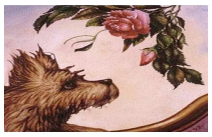 Test visual: una mujer, un perro o un ramo de flores revelarán secretos de tu personalidad.