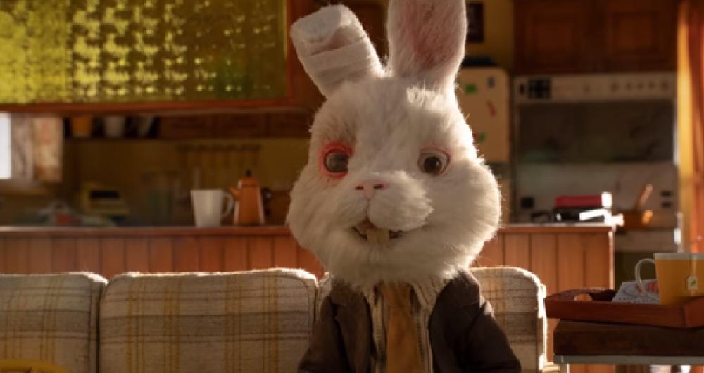 Soy Un Conejo De Testeo La Realidad De Las Pruebas Cosméticas En Animales