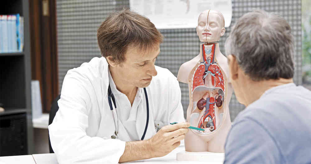 cancer de prostata prevencion oms)