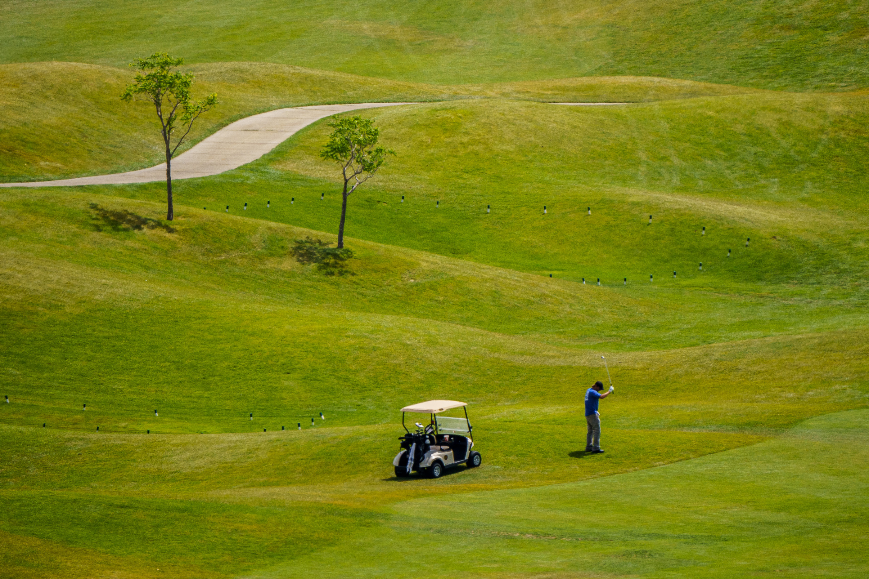 sltrib.com - As climate change tightens its grip, are golf courses a luxury we can no longer afford?