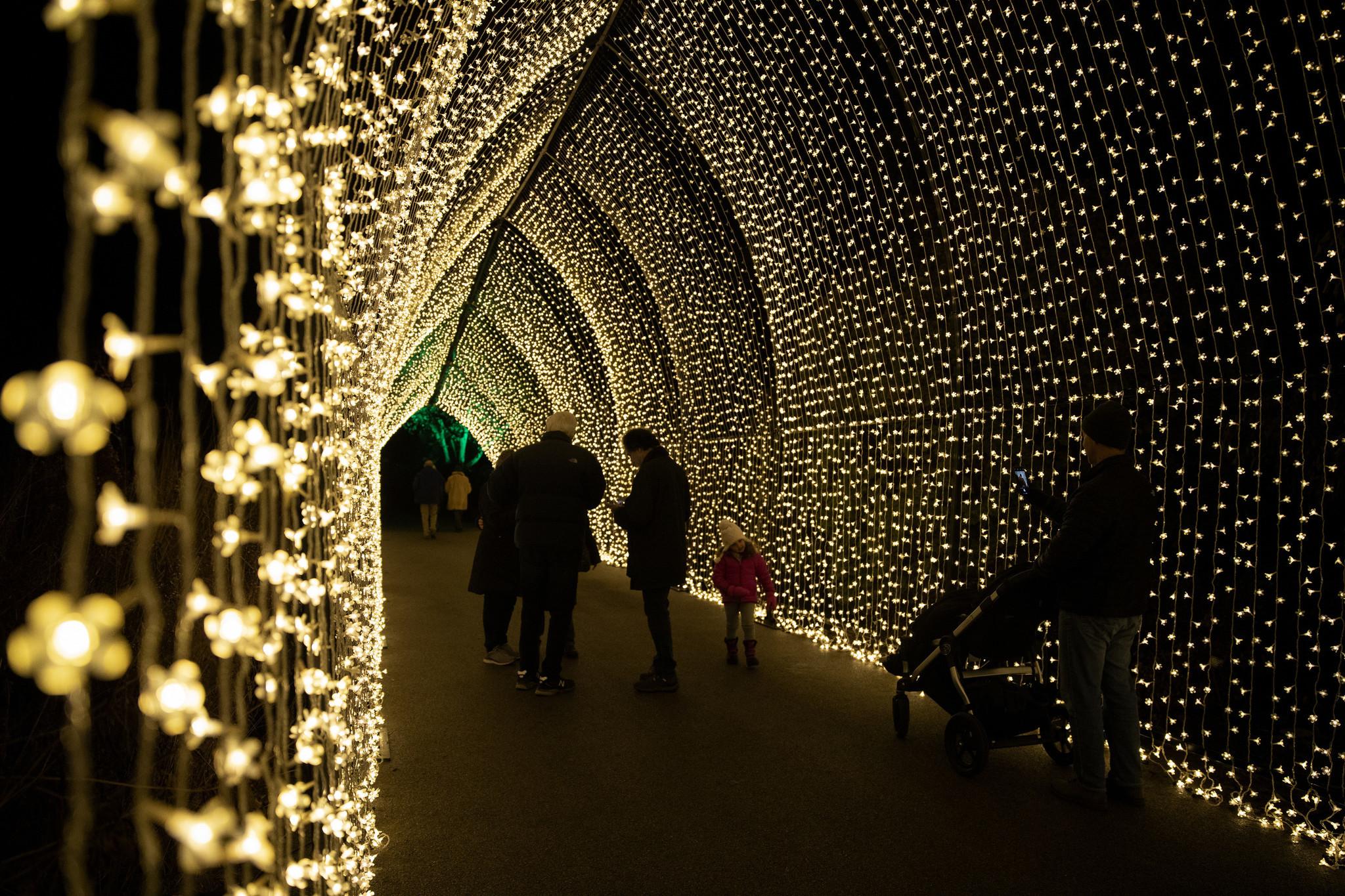 Drive Through Christmas Lights Illinois 2020 Christmas lights Chicago: Where to find bold holiday lights